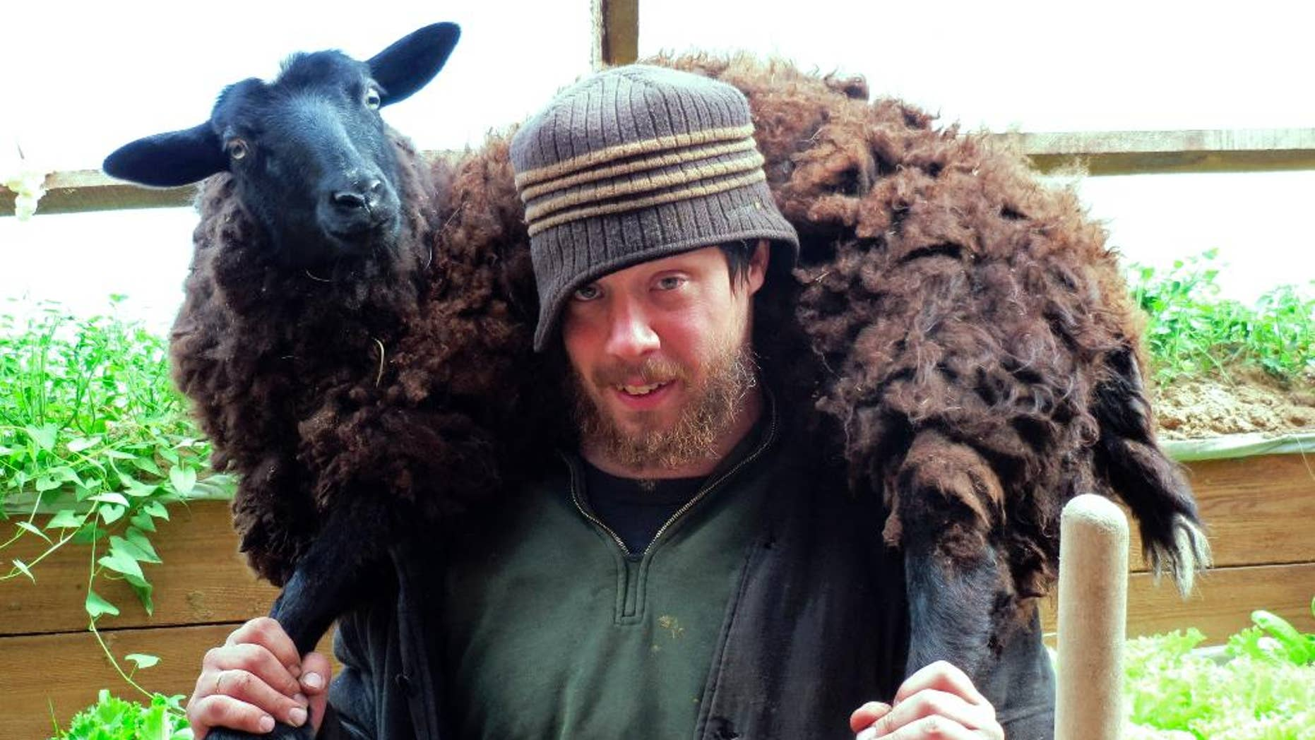 In this handout photo taken on Friday, May  30, 2014, Justus Walker carries a sheep near the eastern Siberian city of Krasnoyarsk, Russia.