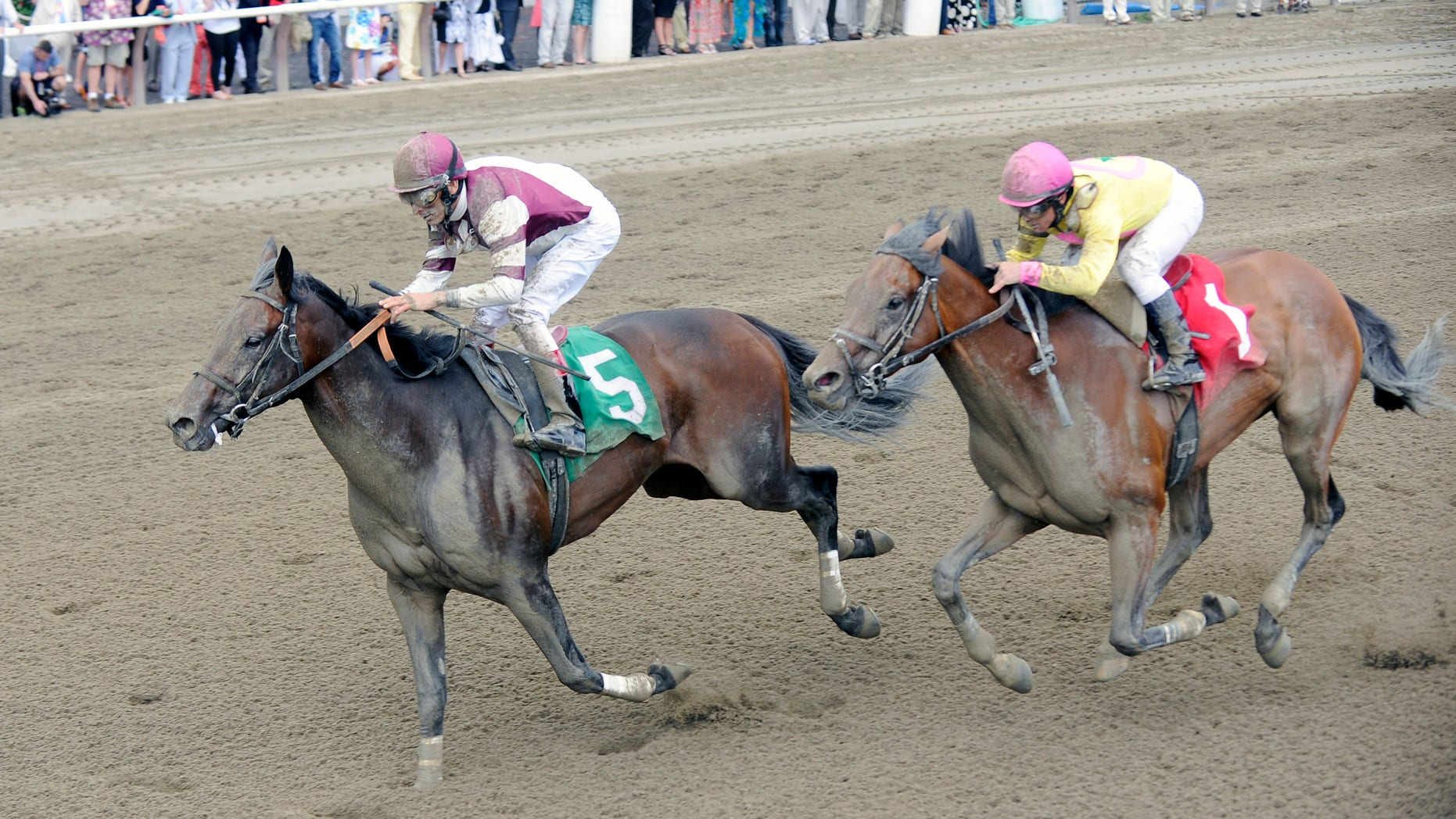 Sea Raven,  ridden by jockey John Velazquez, left, moves past Royal Posse with jockey Javier Castellano up, to win the first race on opening day of the horse racing season at Saratoga Race Course in Saratoga Springs, N.Y., Friday, July 24, 2015. (AP Photo/Hans Pennink)