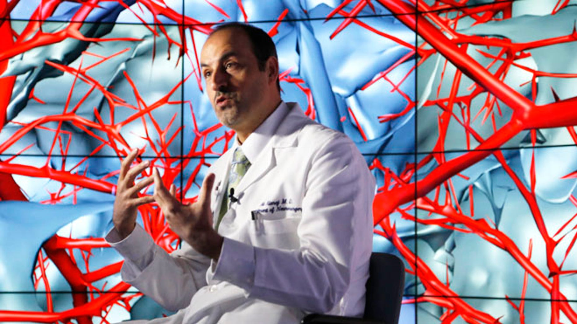 Jan. 24, 2013: Brain surgeon Ali Alaraj talks about the first time he viewed the brain using the CAVE2 -- a system of 72 stereoscopic LCD panels seen behind him. An $85-billion across-the-board slash to funding may affect such advanced scientific research.