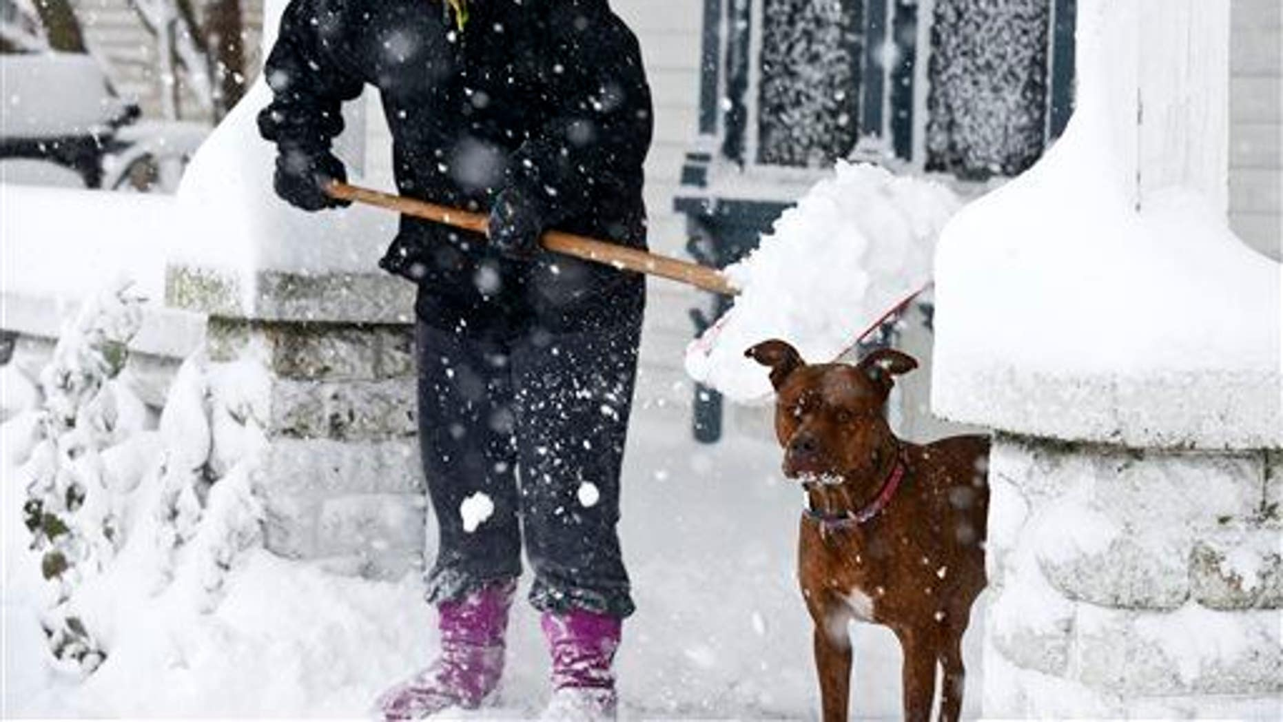 Lauren Hansen shovels snow off her porch as her dog Kapone stands by, Tuesday, Nov. 18, 2014, in Grand Rapids, Mich.
