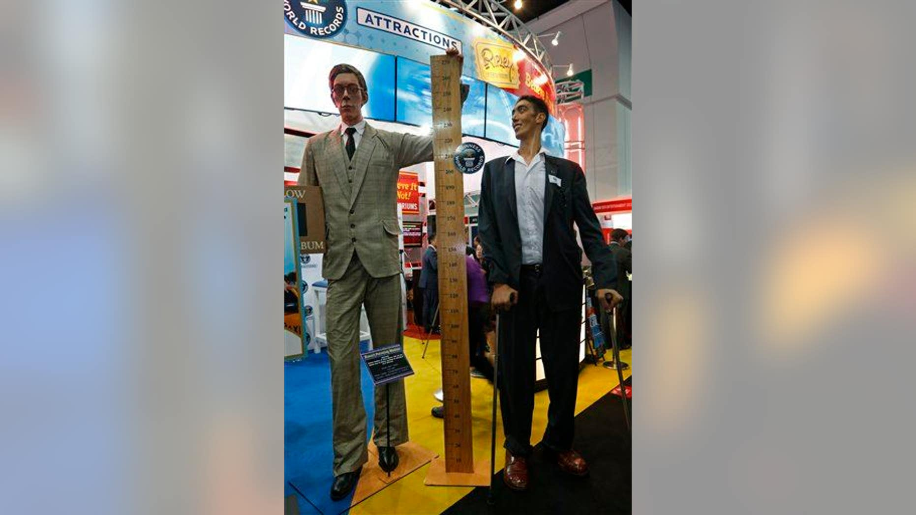The world's tallest man, Sultan Kosen of Turkey, measuring 8 feet 3 inches, right, poses next to a figure of the tallest man in history, Robert Wadlow.