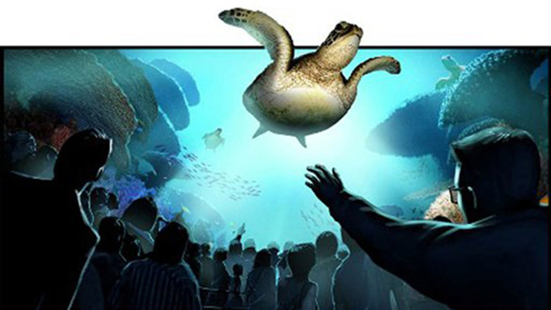 SeaWorld Orlando's TurtleTrek is a blend of nose-to-nose animal encounters and state-of-the art entertainment.