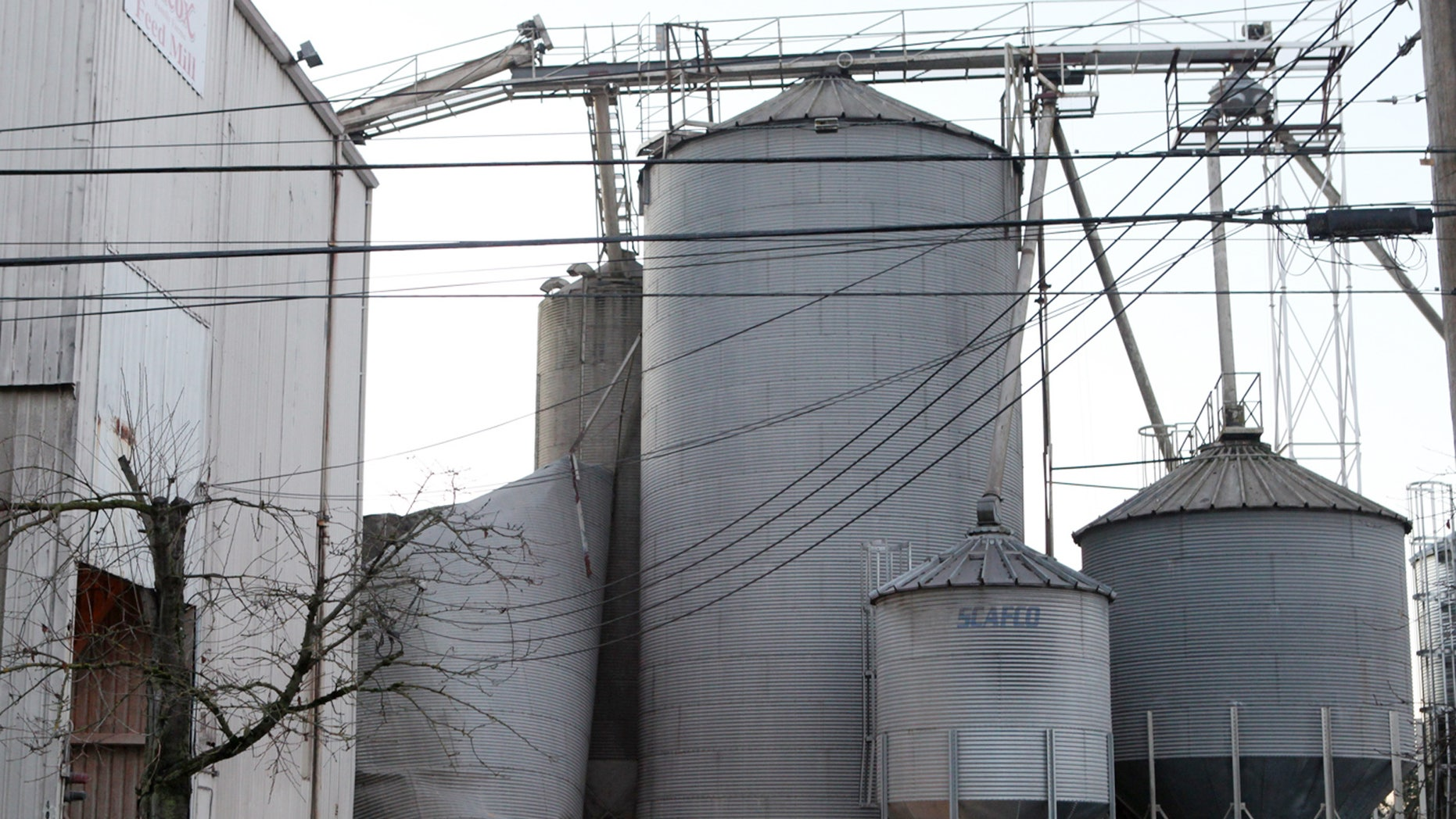 Dec. 2, 2013: Emergency responders from the South Pierce Fire Department respond to a grain processing feed mill owned by Wilcox Farms in downtown Roy, Wash. after one of its silos collapsed.