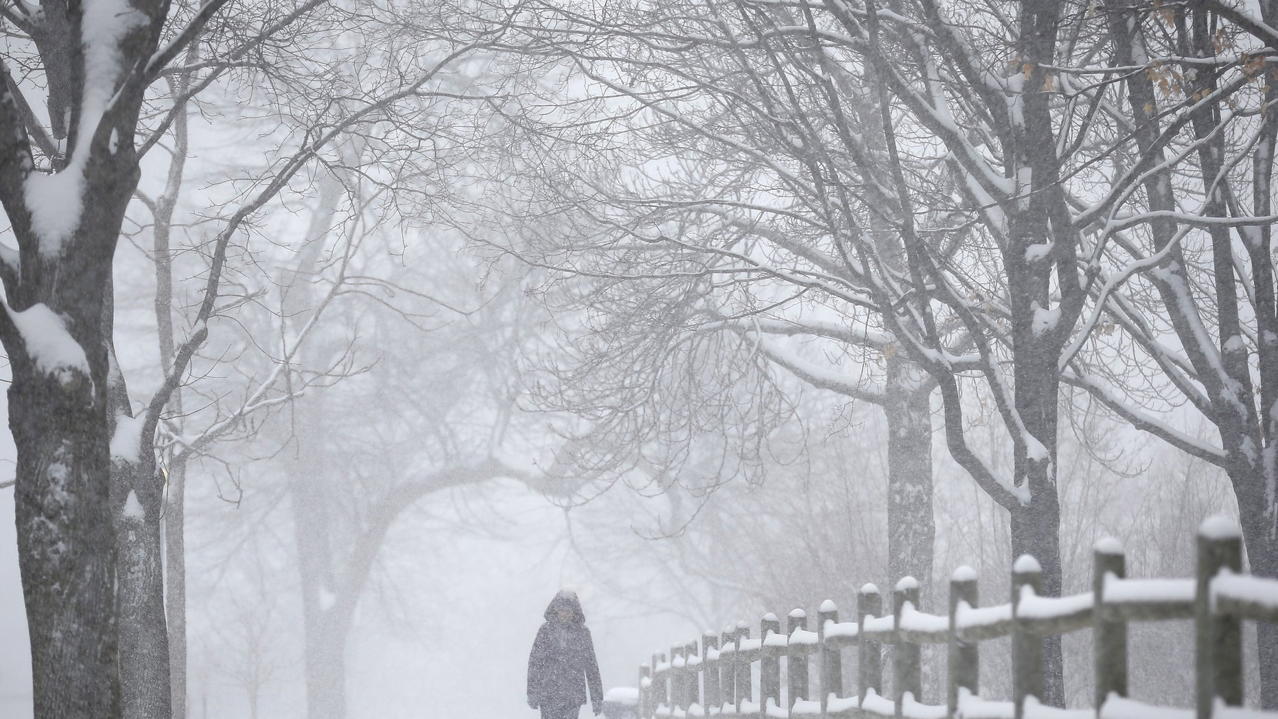 A woman walks down a street during a spring snow storm in the Chicago suburb of Evanston, Illinois March 23, 2015.