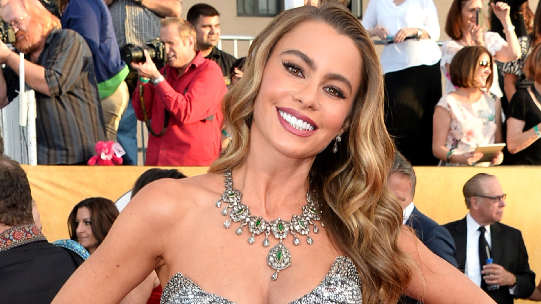 Sofía Vergara attends the 20th Annual Screen Actors Guild Awards on January 18, 2014 in Los Angeles, California.