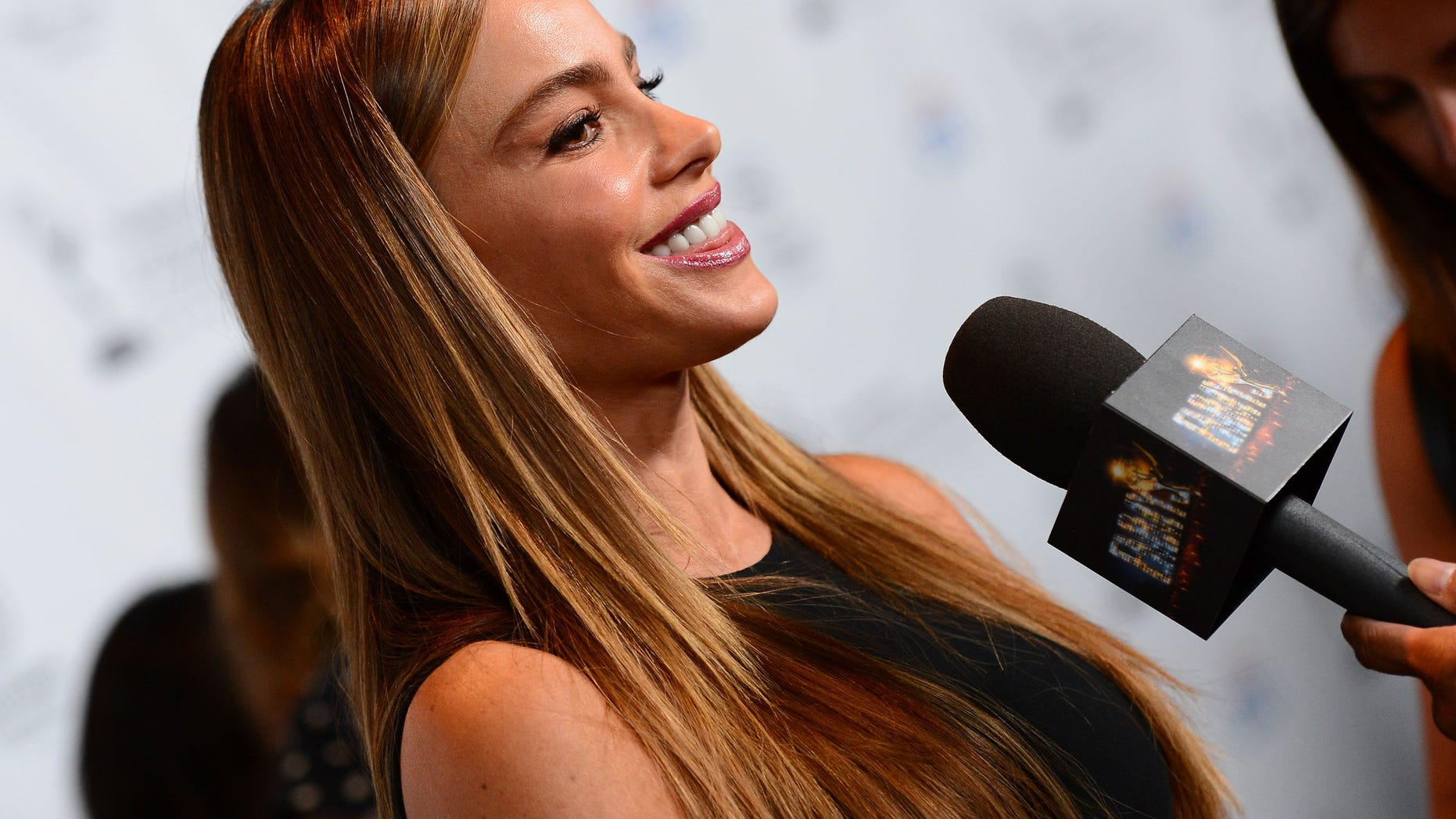Sofia Vergara at the 65th Primetime Emmy Awards on August 19, 2013 in Universal City, California.