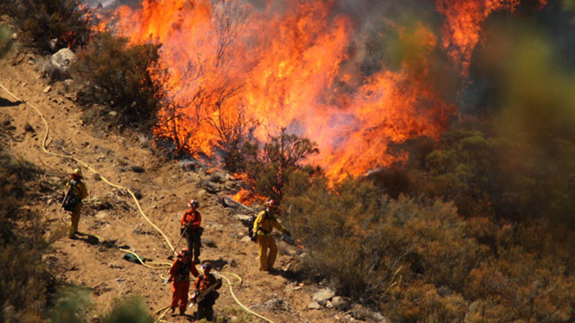 July 17, 2013: A female inmate hand crew from Puerta La Cruz and firefighters in an engine company with them set fire to reinforce the line to stave off part of the Mountain Fire burning up a hill toward them off Apple Canyon Road near Lake Hemet, Calif. Officials say the wildfire in the mountains west of Palm Springs has destroyed three houses and three mobile homes and is threatening dozens more residences. (AP Photo/The Desert Sun, Crystal Chatham)