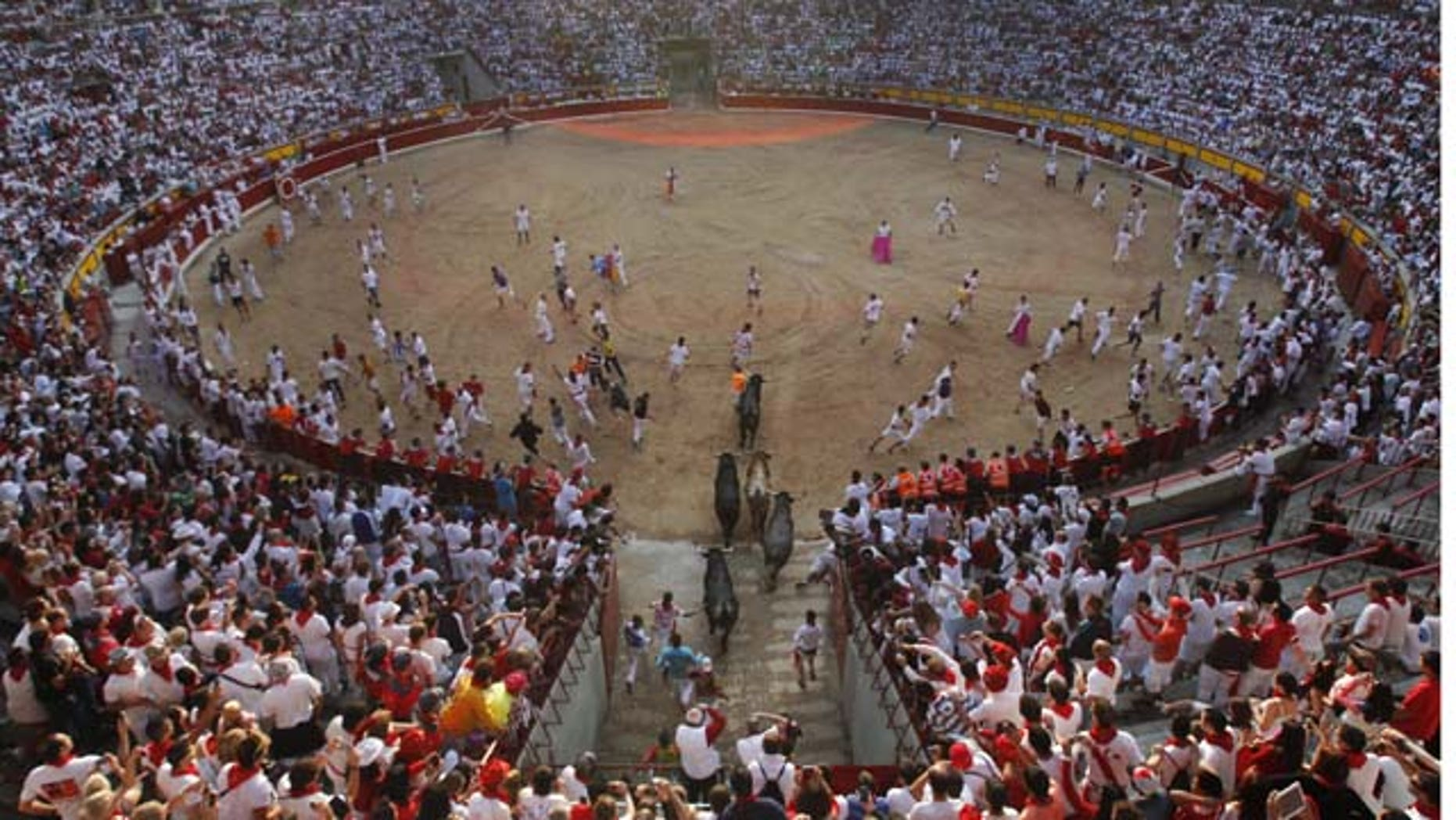 "July 14, 2013: Runners arriving to the bull ring with ""Miura"" fighting bulls during the eighth and last running of the bulls at the San Fermin festival, in Pamplona, Spain. (AP Photo/Alvaro Barrientos)"