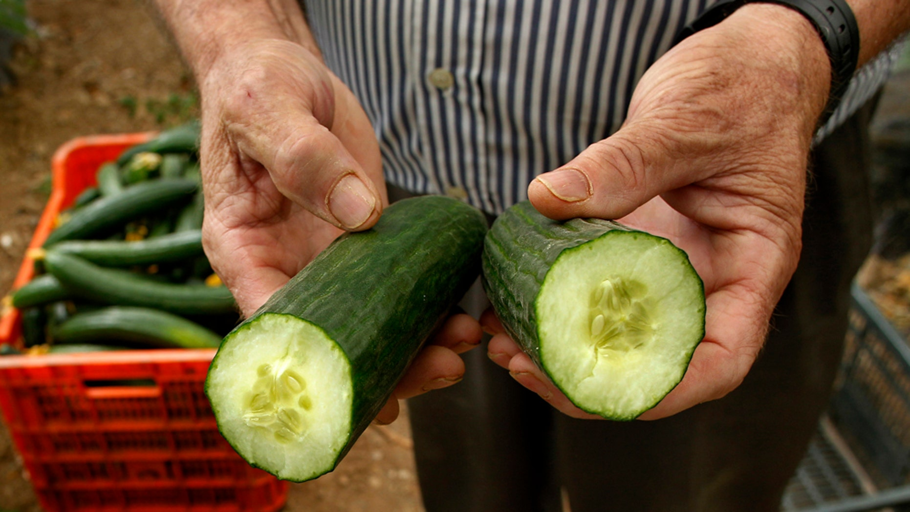 Contaminated cucumbers from Spain may have killed 16 people and sickened dozens of others in Europe in a mysterious bacterial outbreak linked to E. coli.