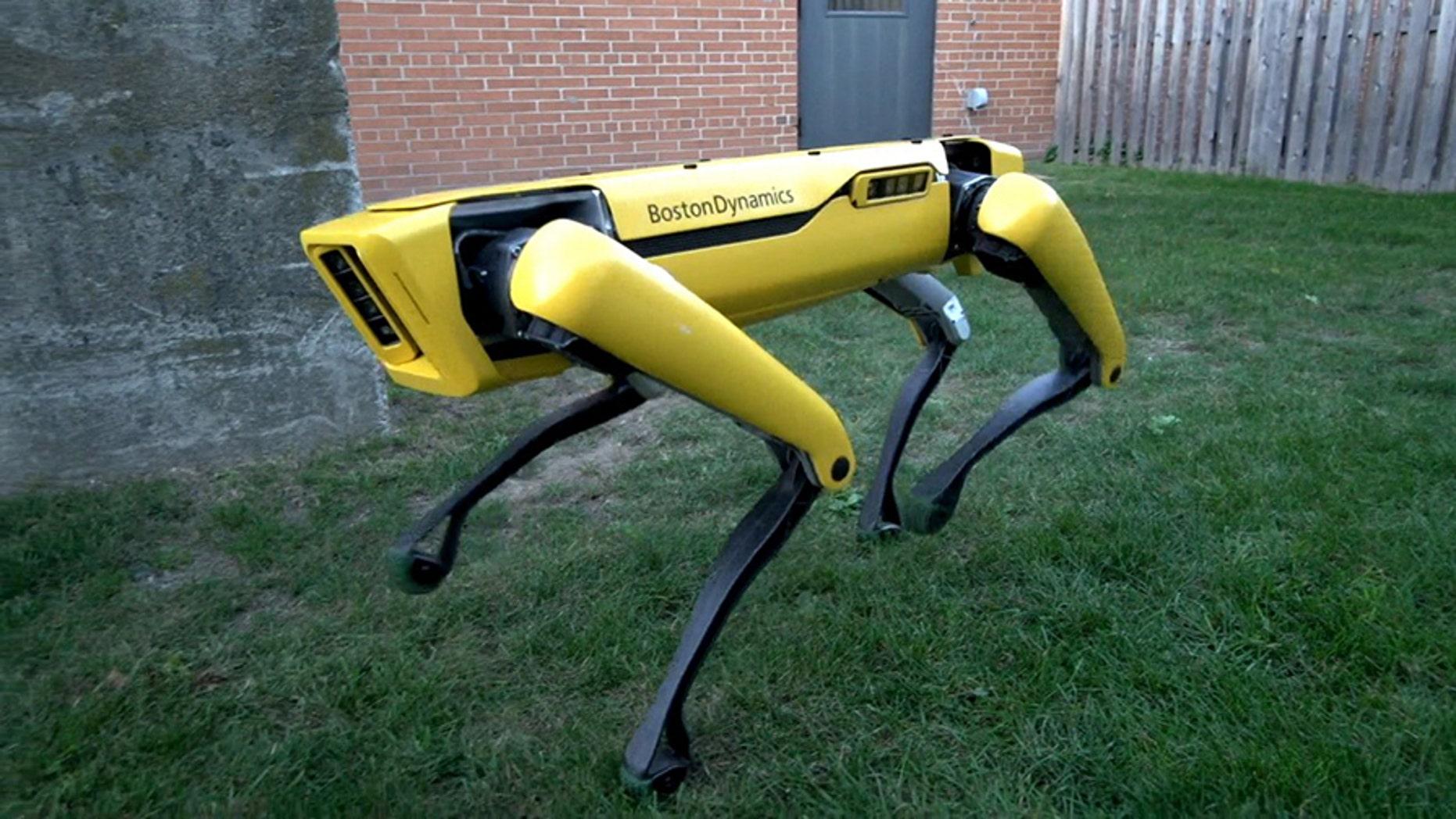 Boston Dynamics' latest SpotMini update allows the four-legged robot to open doors.