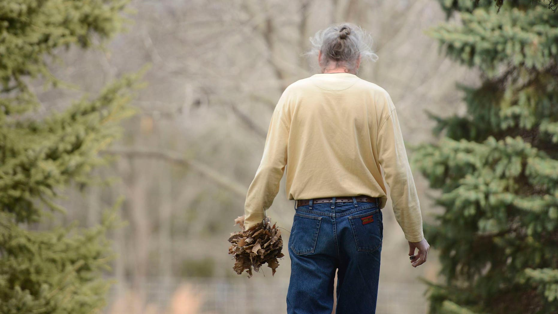 In this Thursday, Dec. 3, 2015, photo, Brian Cottle carries a handful of leaves around his house in Pierpont, Mo. Cottle spent four hours carrying leaves from one side of the yard to the other. This obsessive behavior is one of the symptoms of early onset Alzheimer's. (Kayla Wolf/Missourian via AP)