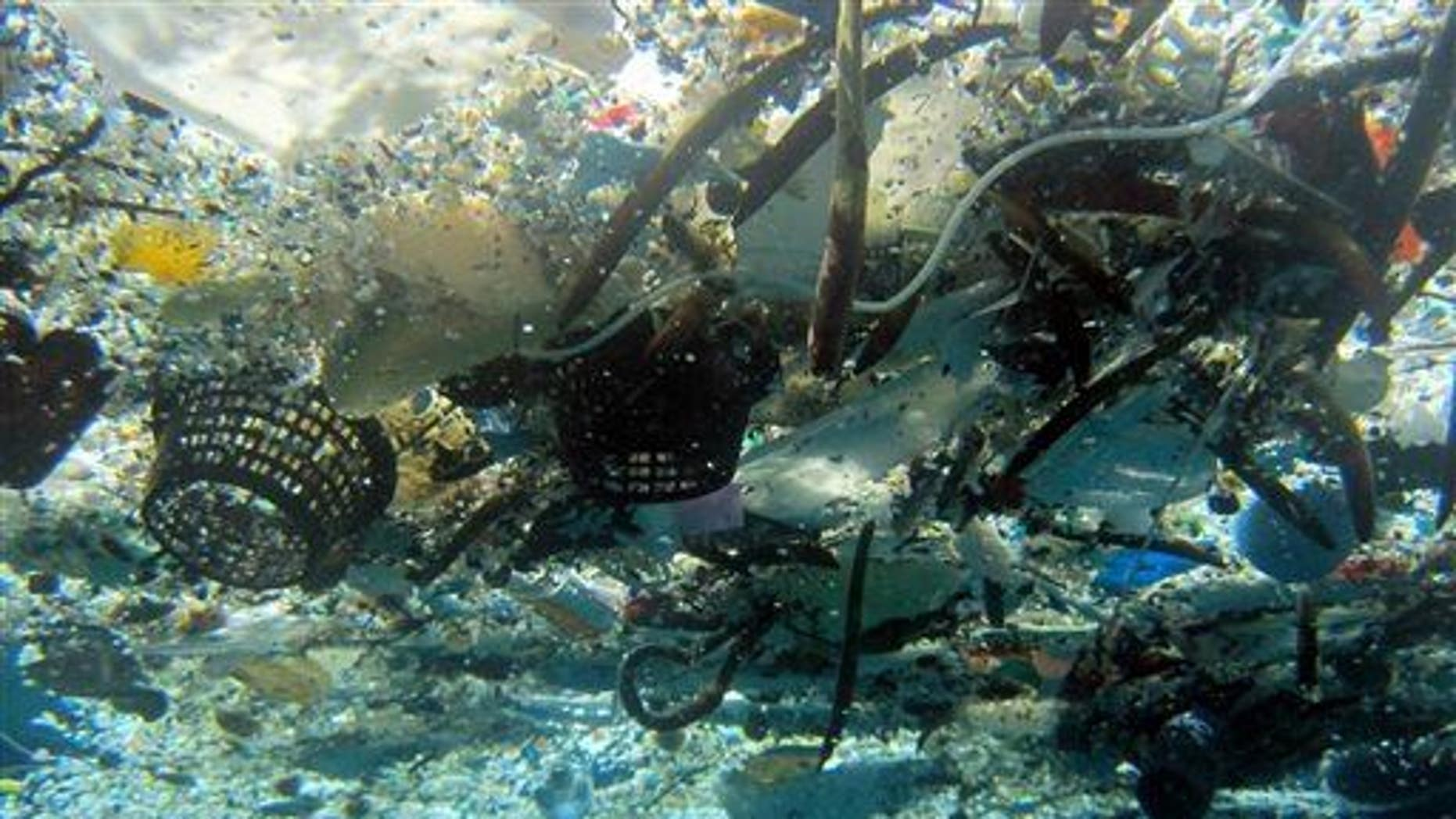 This 2008 photo shows debris in Hanauma Bay, Hawaii.