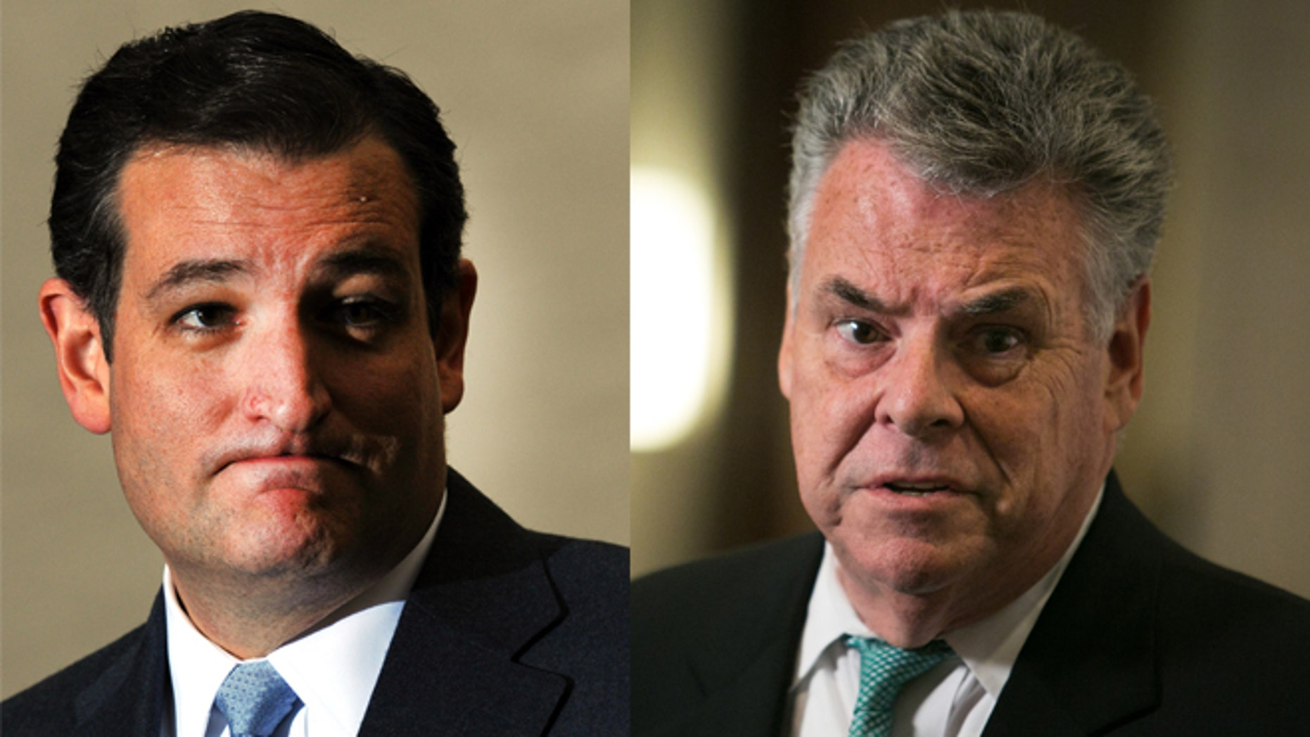 Ted Cruz (R-Texas) and Peter King (R-NY)