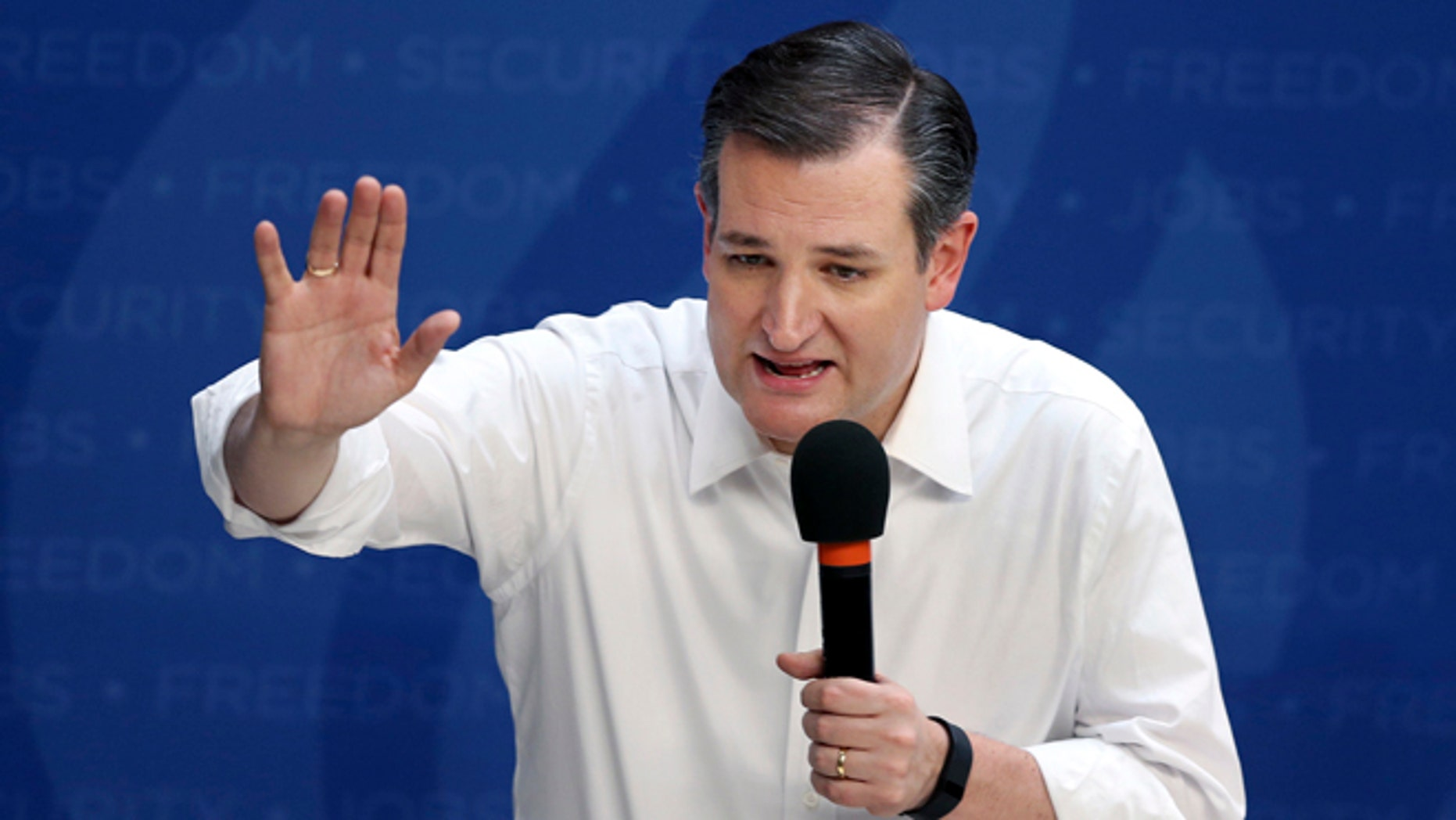 Republican presidential candidate Sen. Ted Cruz, R-Texas, speaks at a campaign rally Friday, April 15, 2016,  in Syracuse, N.Y. (AP Photo/Mel Evans)