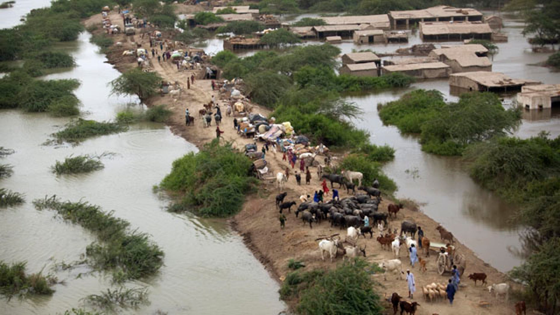 August 29: Pakistani's displaced by flooding take shelter on the higher ground of an embankment near the flooded Indus River, outside Thatta, Sindh Province, southern Pakistan. (AP)
