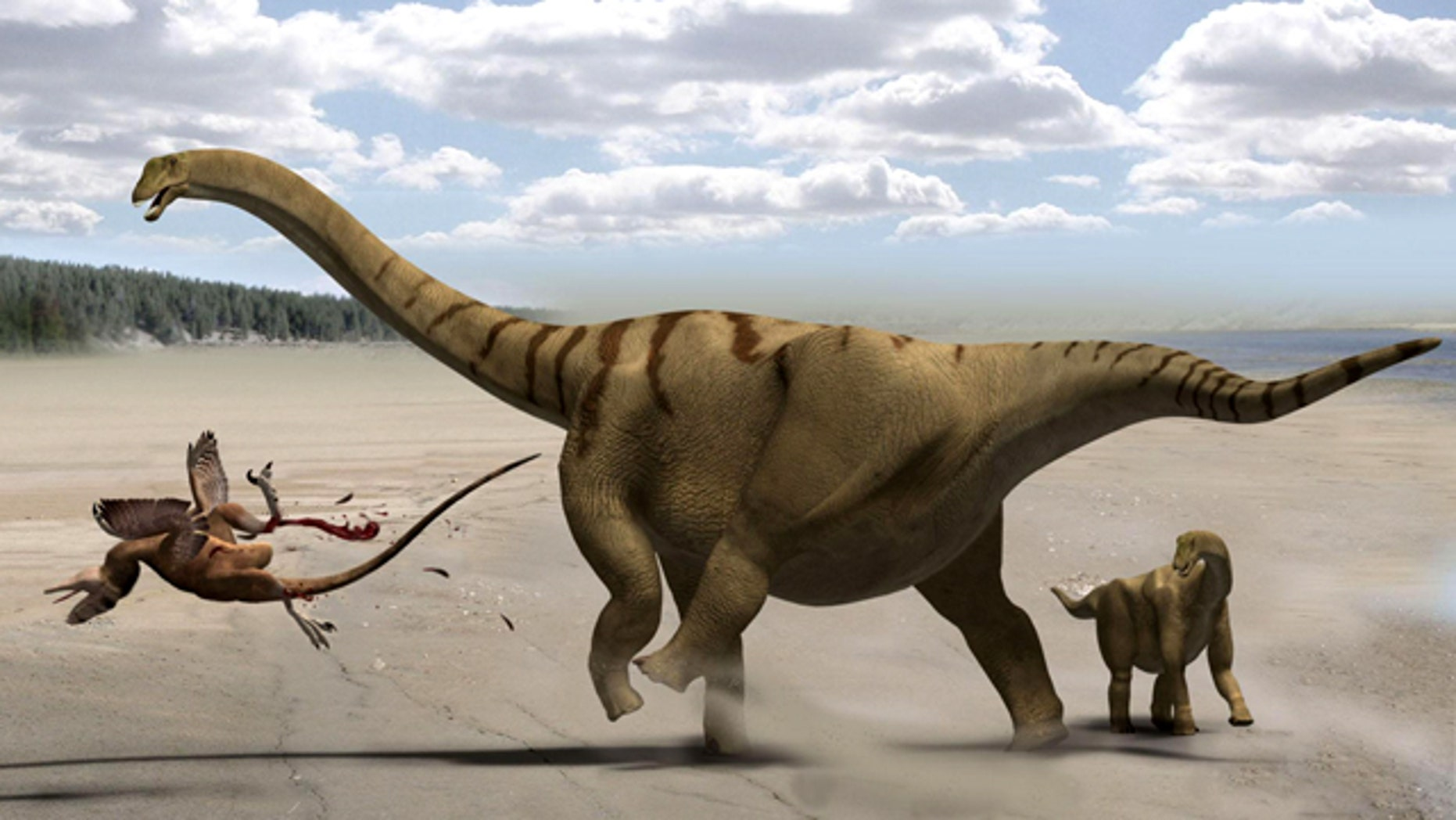This life restoration shows the adult Brontomerus as a mother, protecting her baby from a predator by using her powerful thigh muscles to deliver a devastating kick.