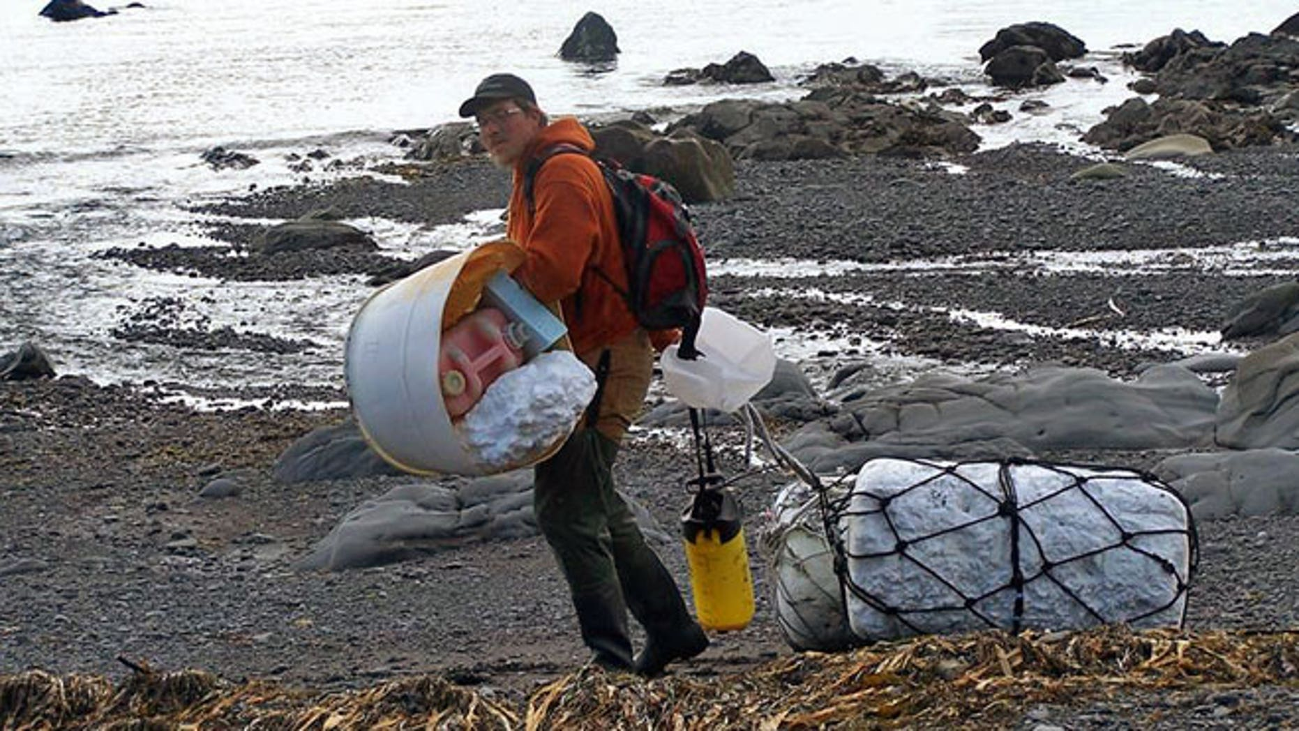 In this June 6, 2012 photo provided by Ryan Pallister, Patrick Chandler removes tsunami debris on Montague Island near Seward, Alaska.