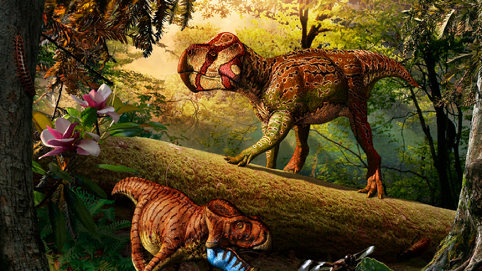 Unescoceratops koppelhusae (upper right) and Gryphoceratops morrisonii (lower left), new leptoceratopsid dinosaurs from Alberta, Canada.