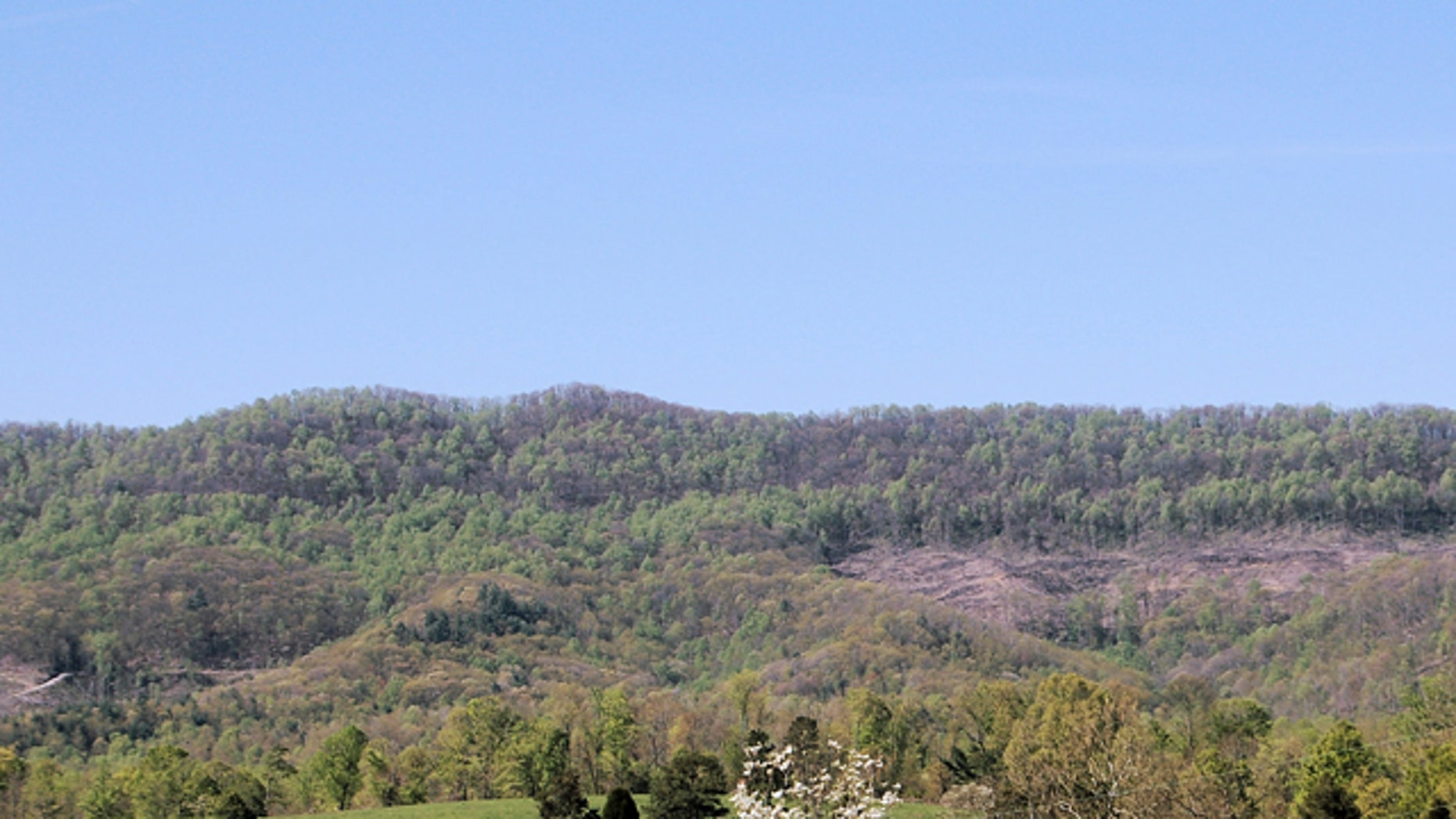An undated photo provided by the University of Tennessee shows Wilson Mountain in the Cumberland Forest, a state-owned research area used by the University of Tennessee.