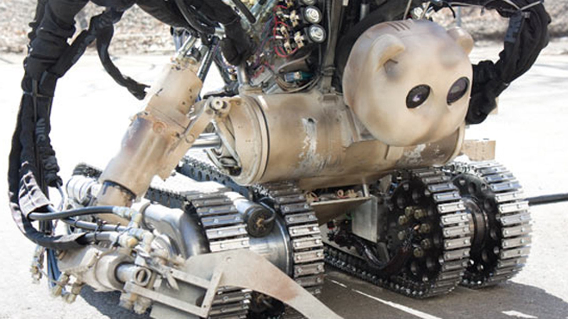 The bear robot, a dotor's best friend in a warzone.