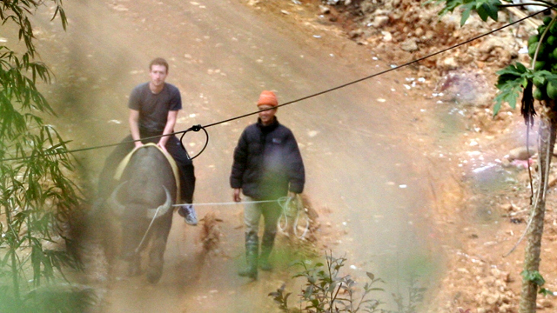 Dec. 26, 2011: Facebook-founder Mark Zuckerberg rides a water buffalo in northern resort town of Sapa in Lao Cai province. Vietnam may block its citizens from using to Facebook, but that didn't stop Zuckerberg from spending his vacation there.