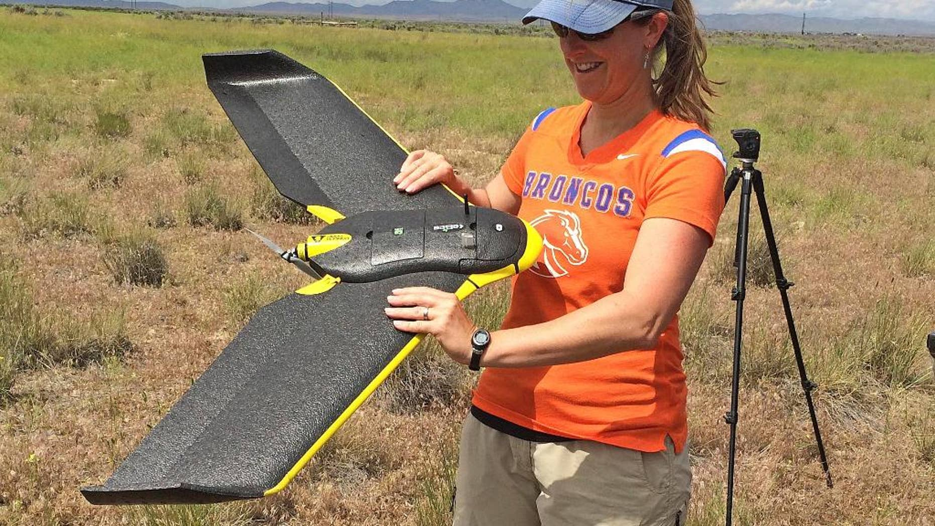 In this photo provided by Jennifer Forbey and taken June 10, 2015, Boise State University Professor Jennifer Forbey examines a drone prior to launch in an area west of Boise, Idaho. Scientists are testing camera-equipped drones in western Idaho to find out if they can identify subspecies of sagebrush as part of a wildfire strategy to help sage grouse and other wildlife across the West. (Chelsea Merriman/Courtesy of Jennifer Forbey via AP)