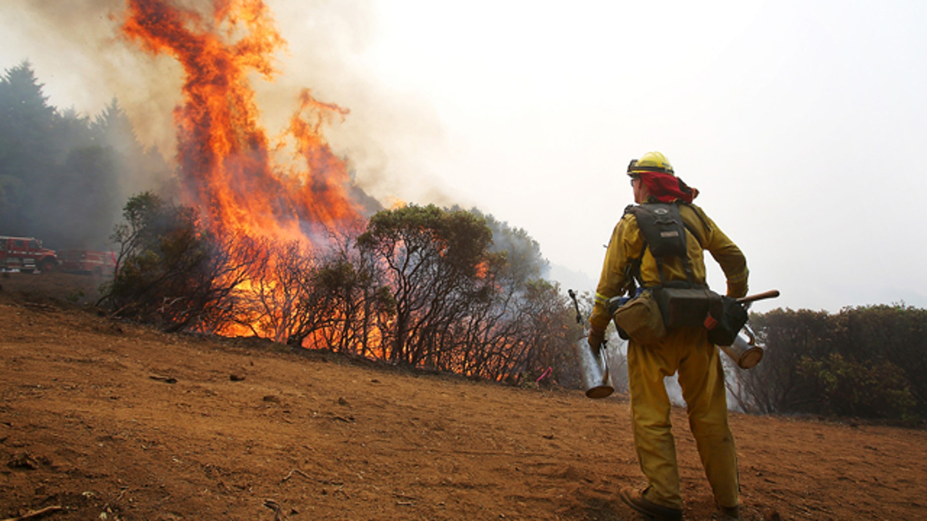 August 11, 2014: A firefighter from the Toulomne-Calevaras Cal Fire Unit watches as brush catches fire from setting a blackline in order to create a buffer at the northeast corner of the Lodge Complex Fire, north of Laytonville, Calif. (AP Photo/The Press Democrat, Christopher Chung)