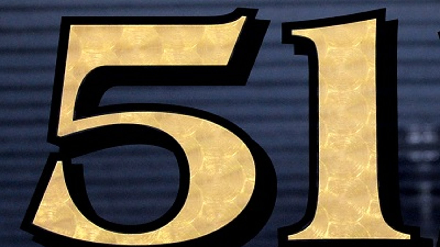 Solid gold vinyl house numbers? | Fox News