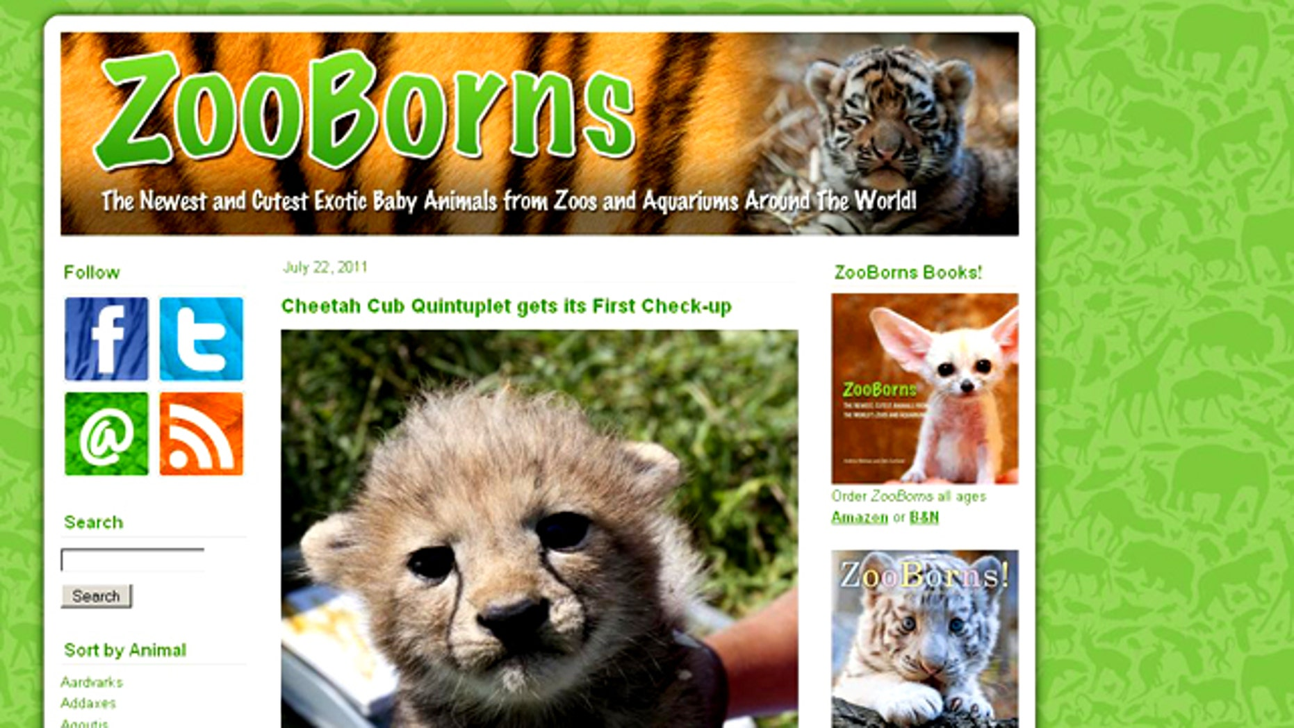 The ZooBorns.com website gives you a daily dose of cuteness: the newest baby animals from zoos around the world.