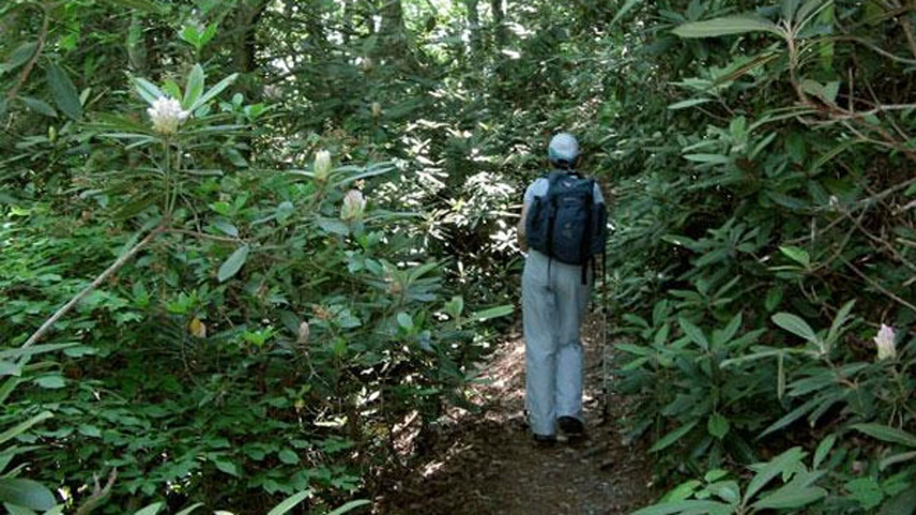 The Appalachian Trail near the tiny Blue Ridge Mountain town of Hot Springs, N.C.