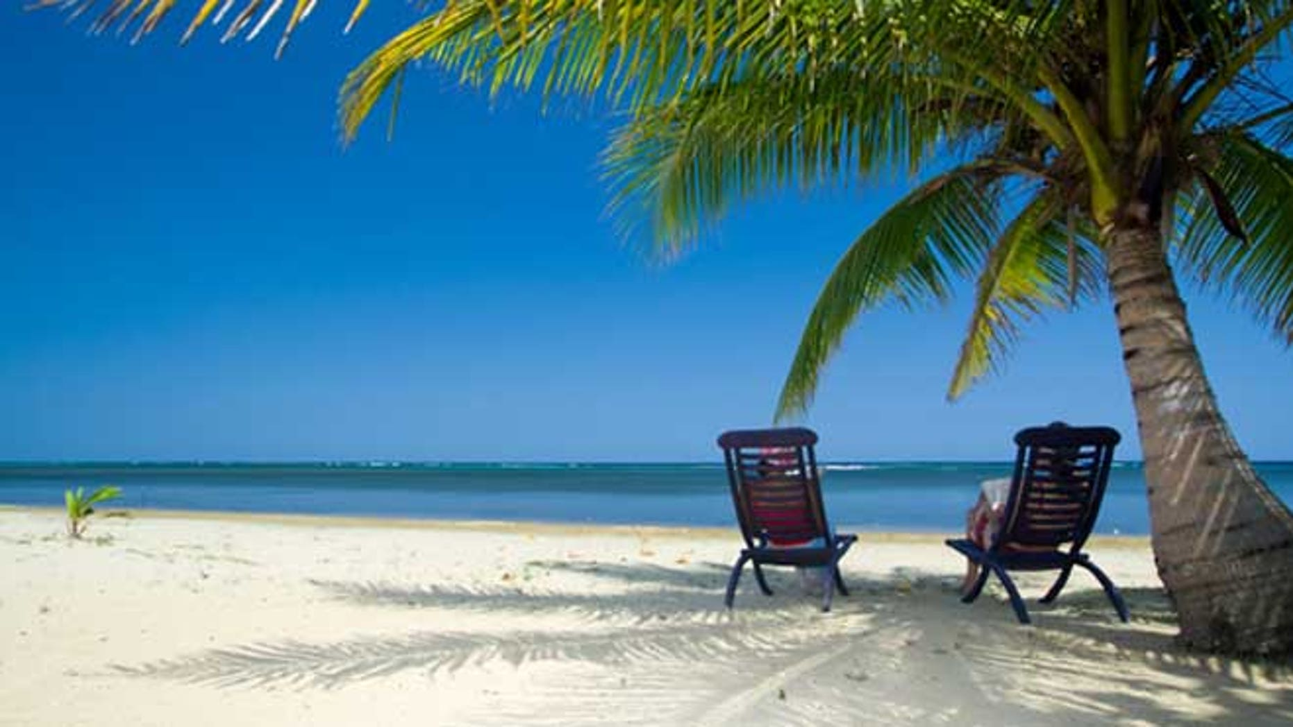 Relaxing under a palm tree on remote beach