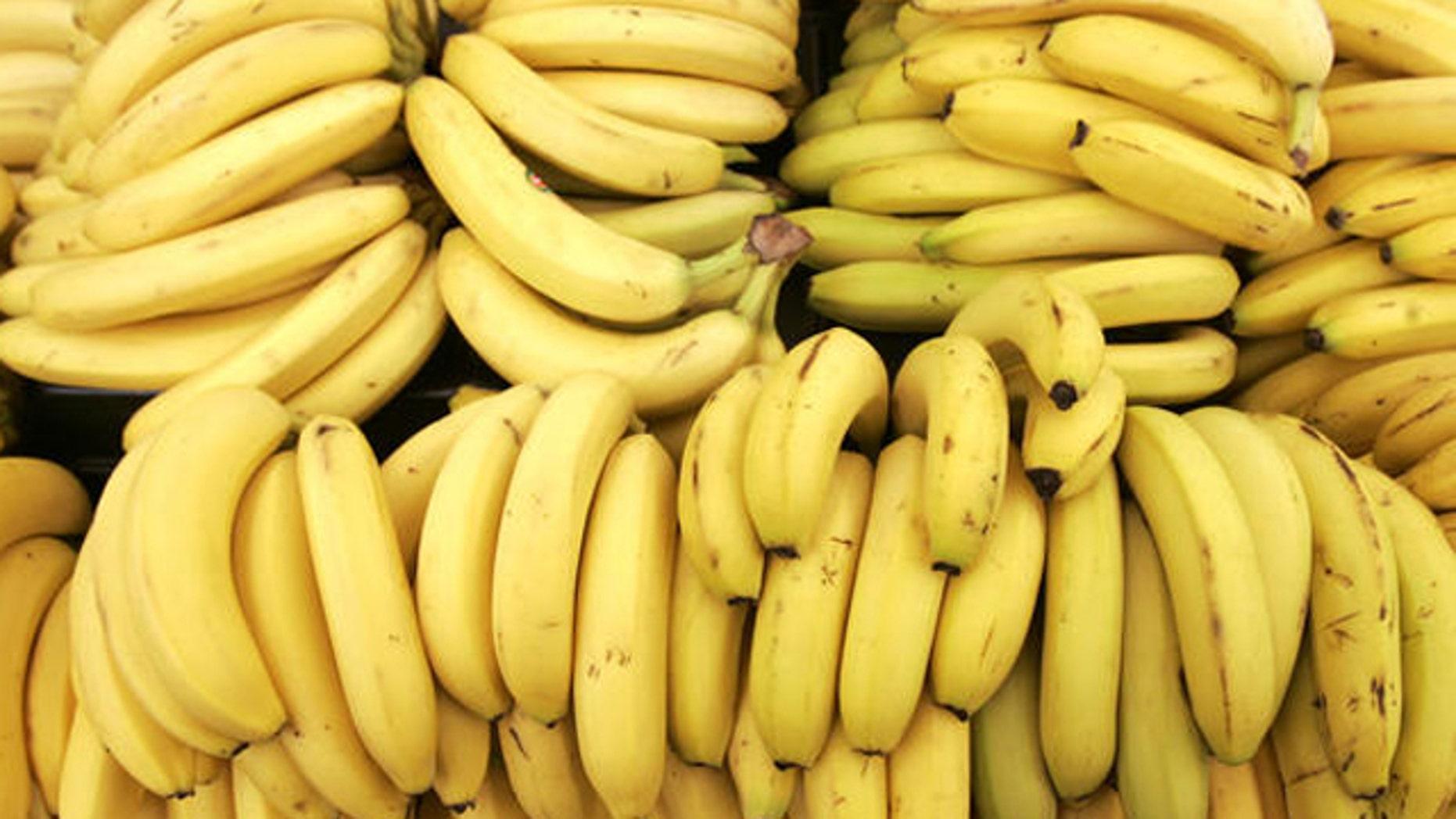 Banana fungus threaten the global supply of one of America's favorite snack.