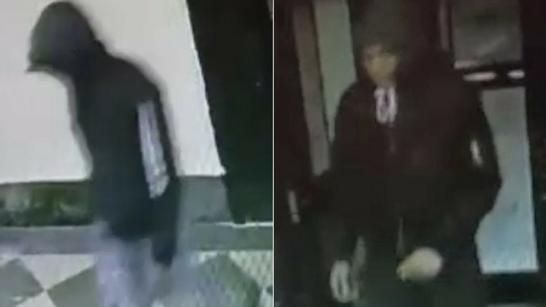 Police are searching for two teenage boys after a father was shot and killed in his Bronx home on Friday, police said.