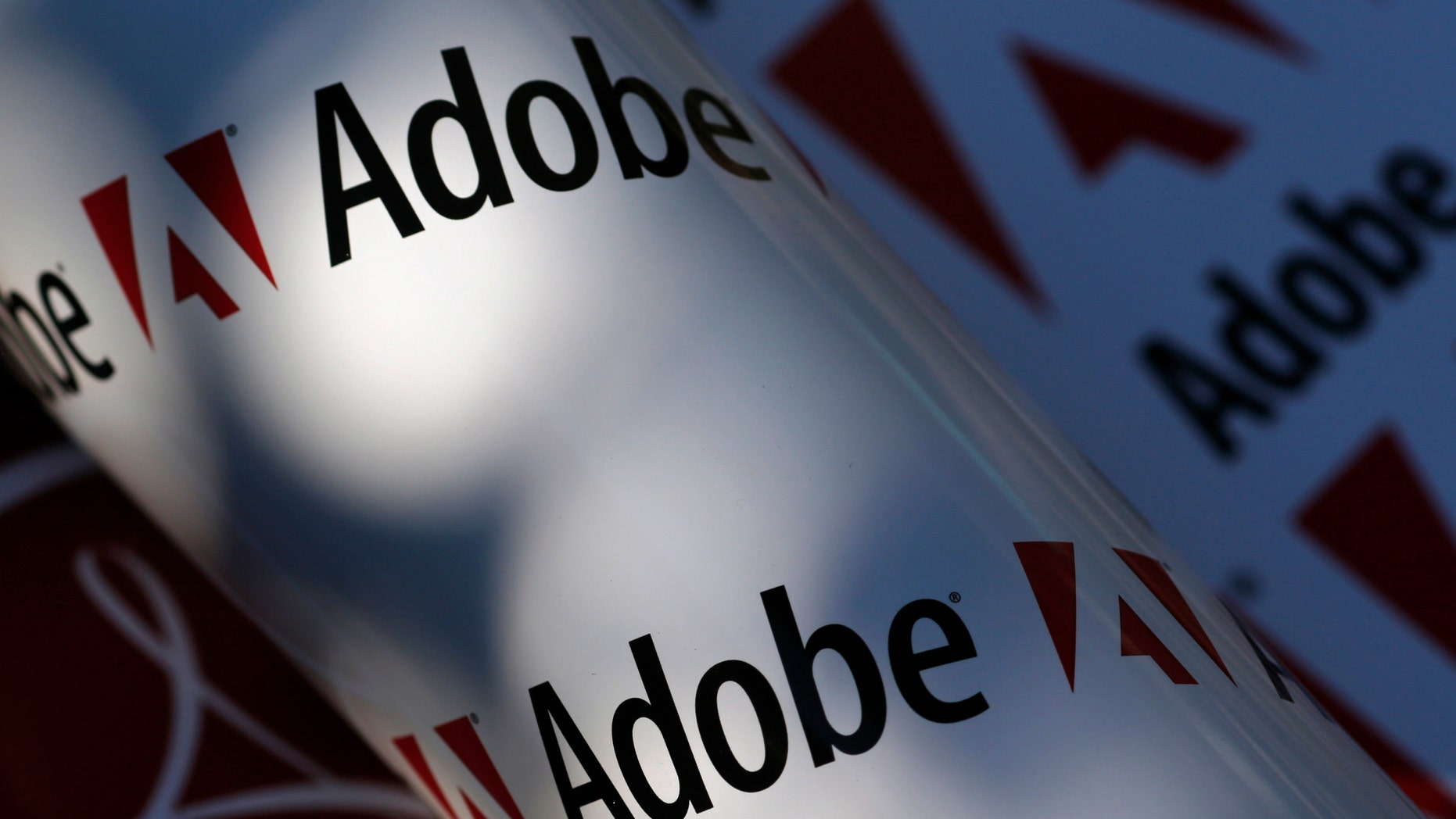 Adobe company logos are seen in this picture illustration taken in Vienna July 9, 2013 (REUTERS/Leonhard Foege).