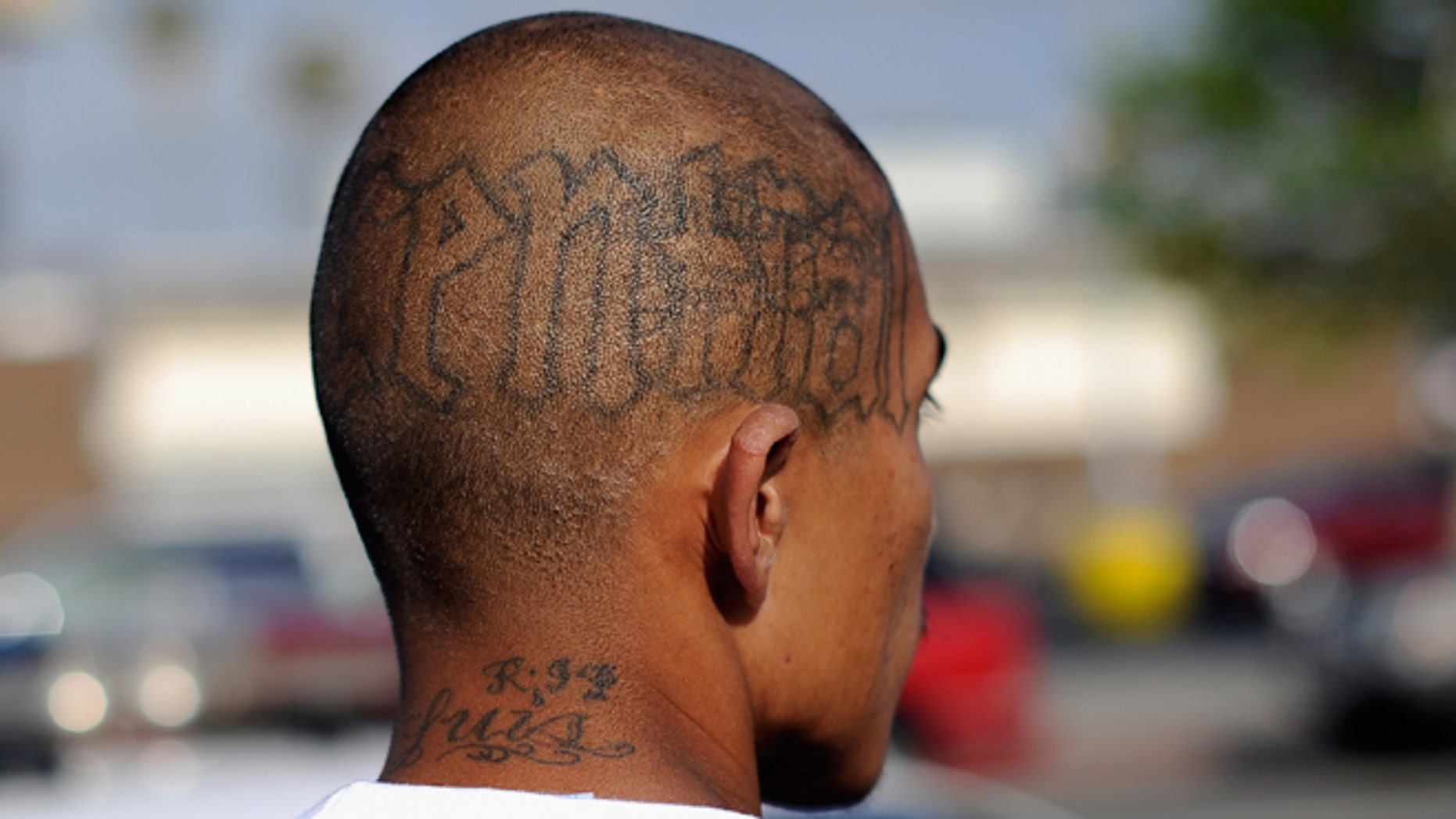 """LOS ANGELES, CA - APRIL 29:  Tattoos are seen on the head of a twenty-year old """"Street Villains"""" gang member who was arrested by Los Angeles Police Department officers from the 77th Street division on April 29, 2012 in Los Angeles, California. The 77th Street division patrol the same neighborhood that truck driver Reginald Denny was nearly beaten to death by a group of black assailants at the intersection of Florence and Normandie Avenues. It's been 20 years since the verdict was handed down in the Rodney King case that sparked infamous Los Angeles riots.  (Photo by Kevork Djansezian/Getty Images)"""