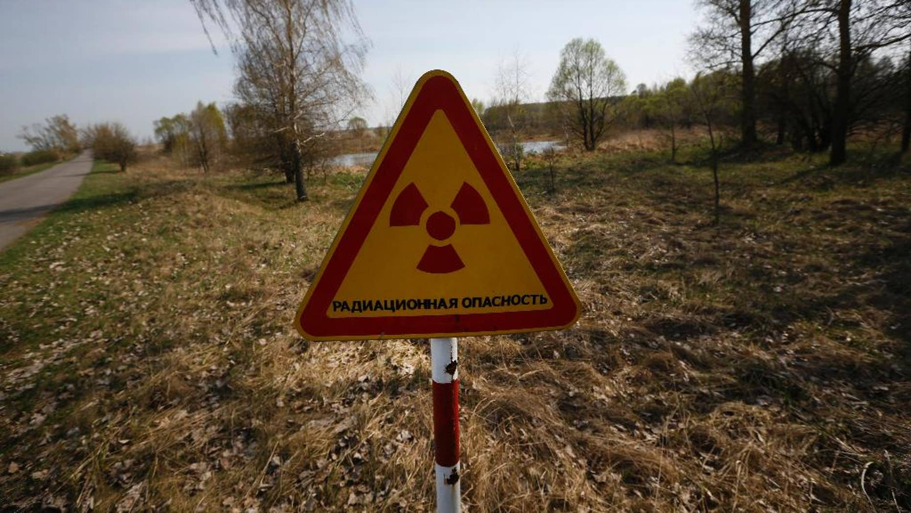 FILE - In this Monday, April 11, 2016, file photo, a radiation warning sign stands near a checkpoint in an exclusion zone around the Chernobyl nuclear reactor, southeast of Minsk, Belarus. A Belarus court on Thursday Dec. 22, 2016 ruled against an Associated Press correspondent in a lawsuit by a dairy company that claimed an AP article about farming on fallout-damaged land hurt its reputation. (AP Photo/Sergei Grits, File)