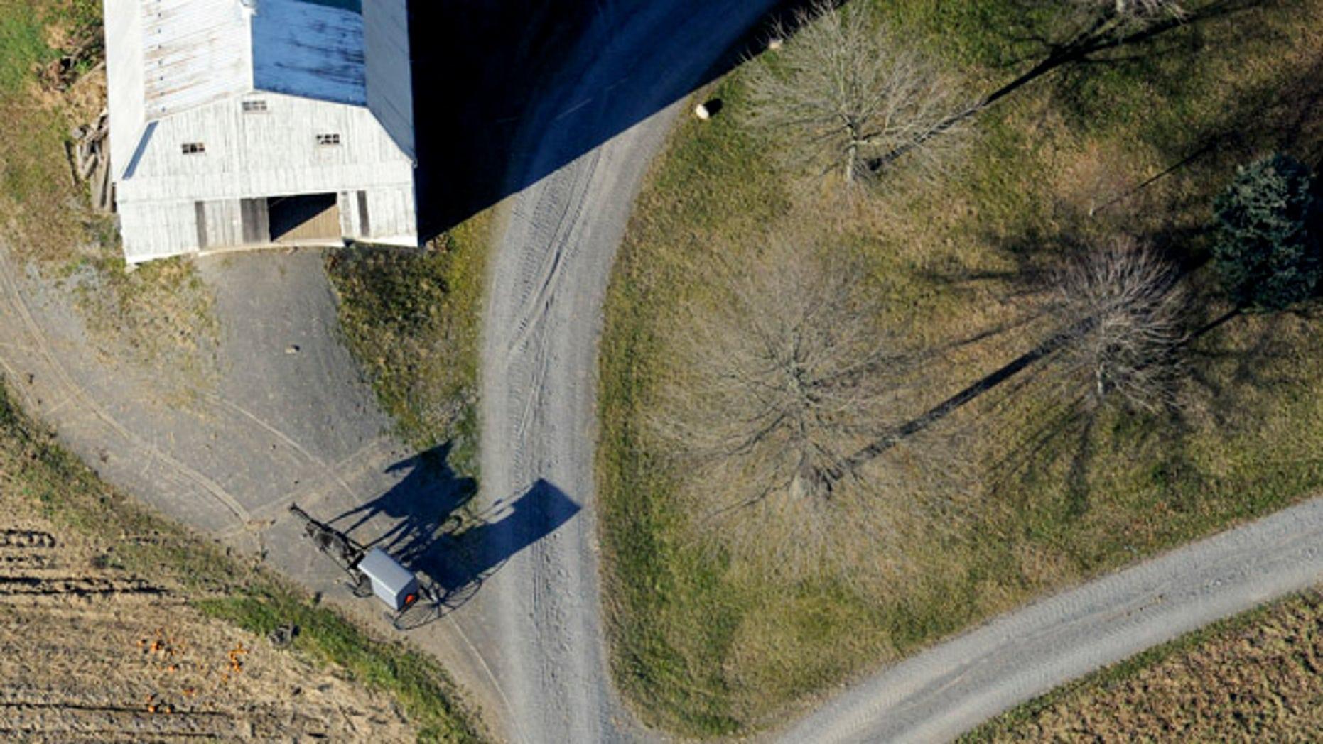 Nov. 20, 2013: An Amish buggy heads down a driveway to a farm off of Greenleaf Road near Washingtonville, Pa.,