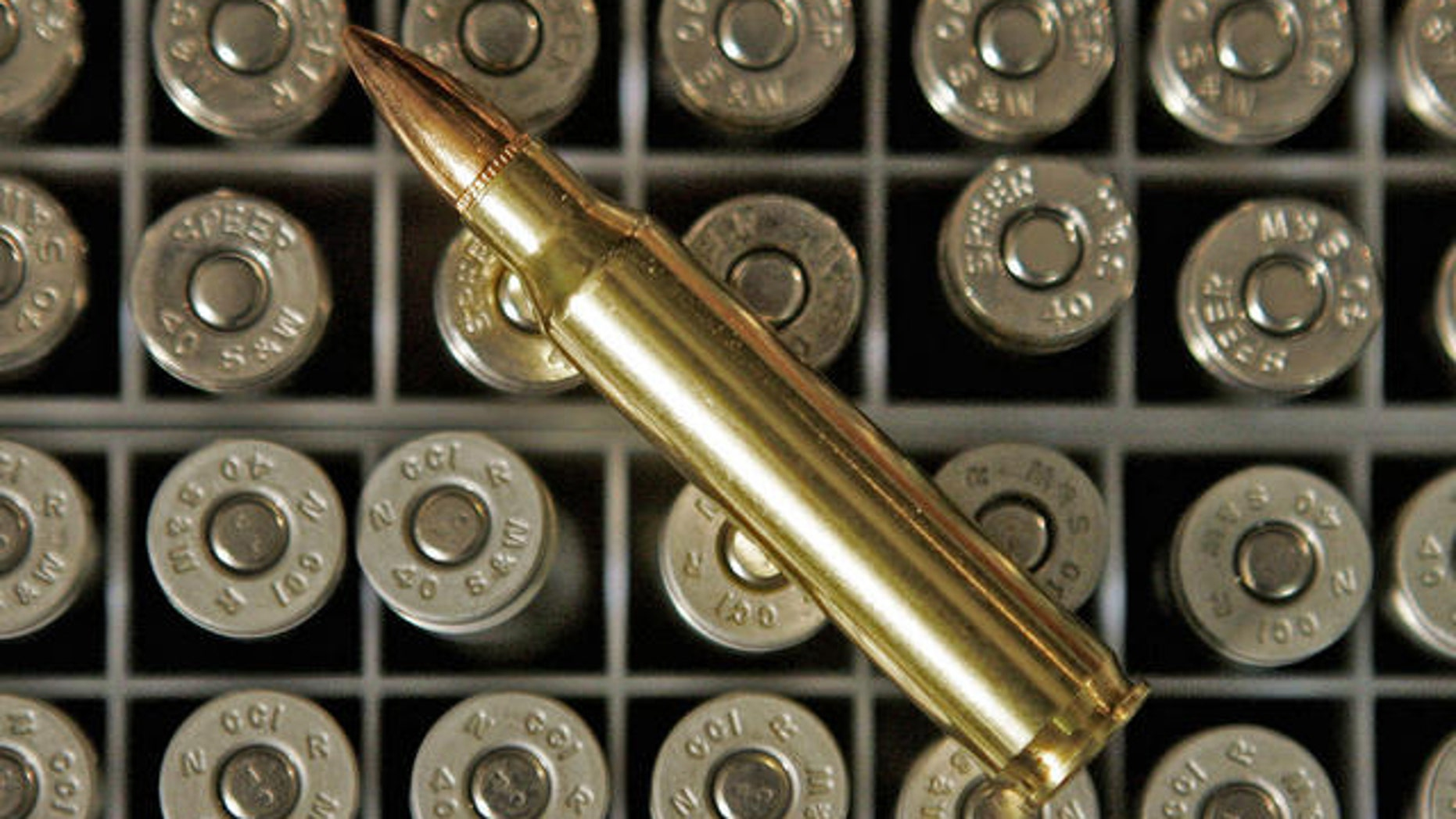 Shown here are .223 caliber bullets.