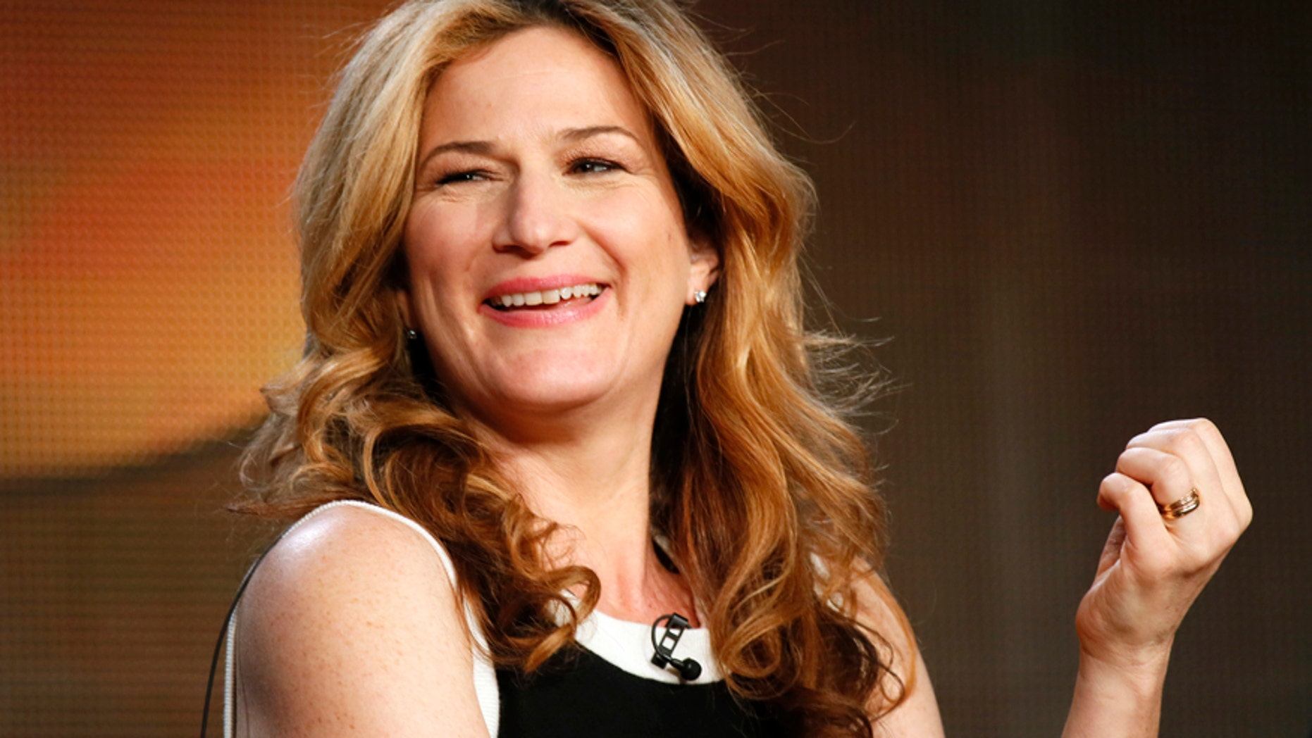 """Actor Ana Gasteyer talks about ABC's """"Suburgatory"""" during the Winter 2014 TCA presentations in Pasadena, California, January 17, 2014."""