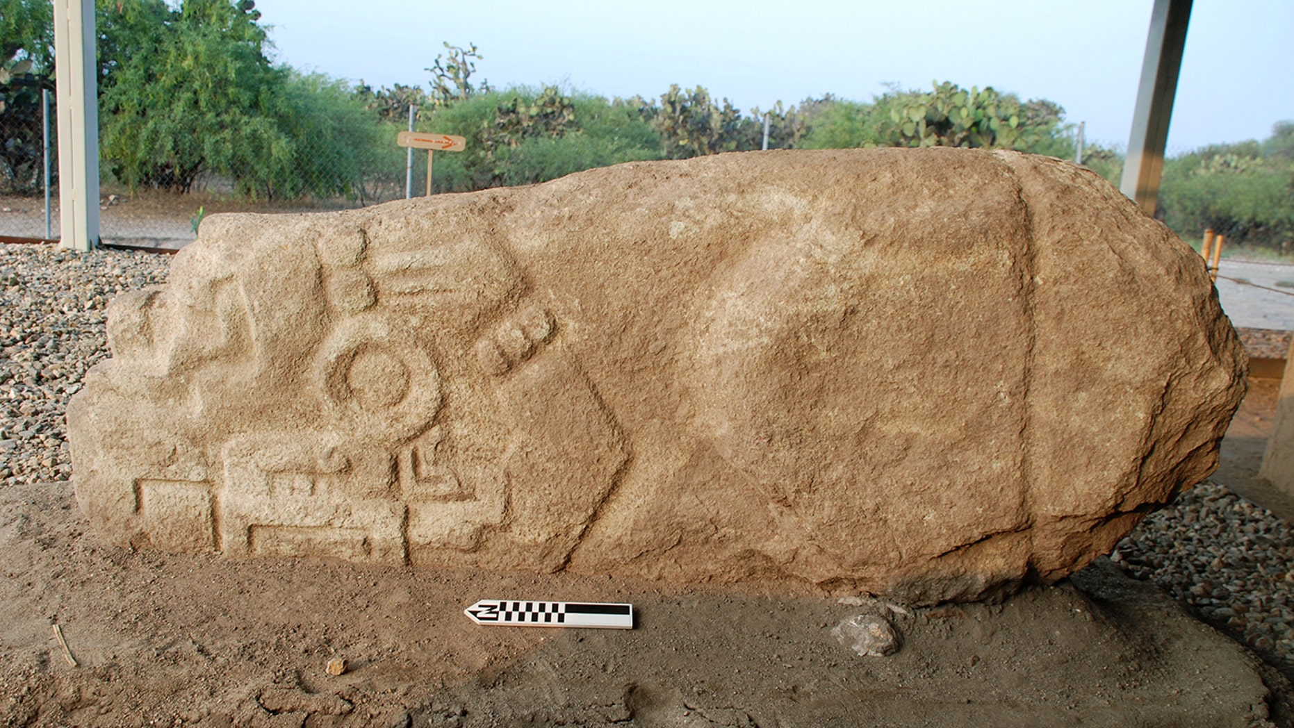 A photo of the crocodile stone discovered by Field Museum archaeologists. The stone was found upside down; the crocodile's rectangular eye is visible on the stone's lower left side, framed on the right by a brac