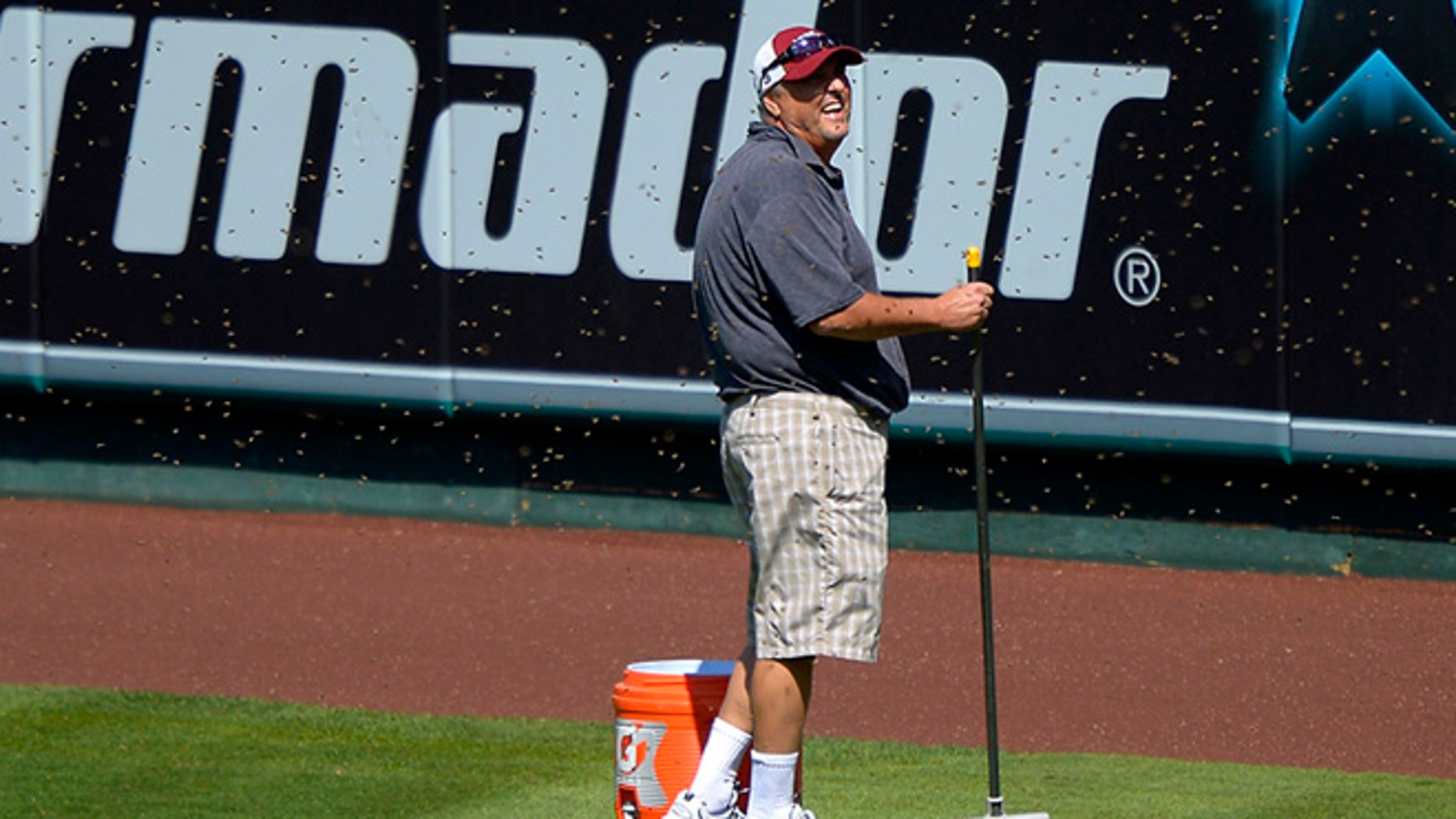 Sept. 22, 2013: Apiarist John Potom, of Honey Pacifica, deals with a swarm of bees that held up a baseball game between the Los Angeles Angels and the Seattle Mariners for several minutes during the third inning on in Anaheim, Calif.