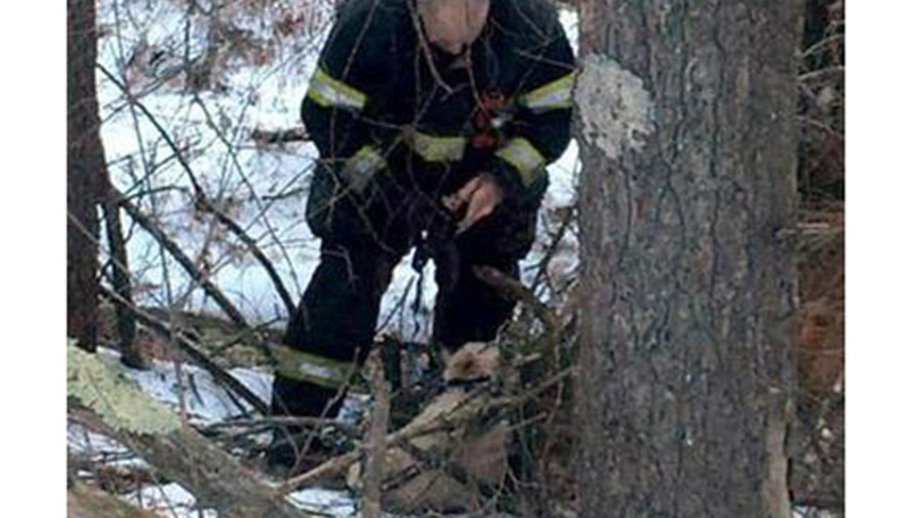 Firefighter works to untangle injured dog, Annabellle. (Orange Police Department)