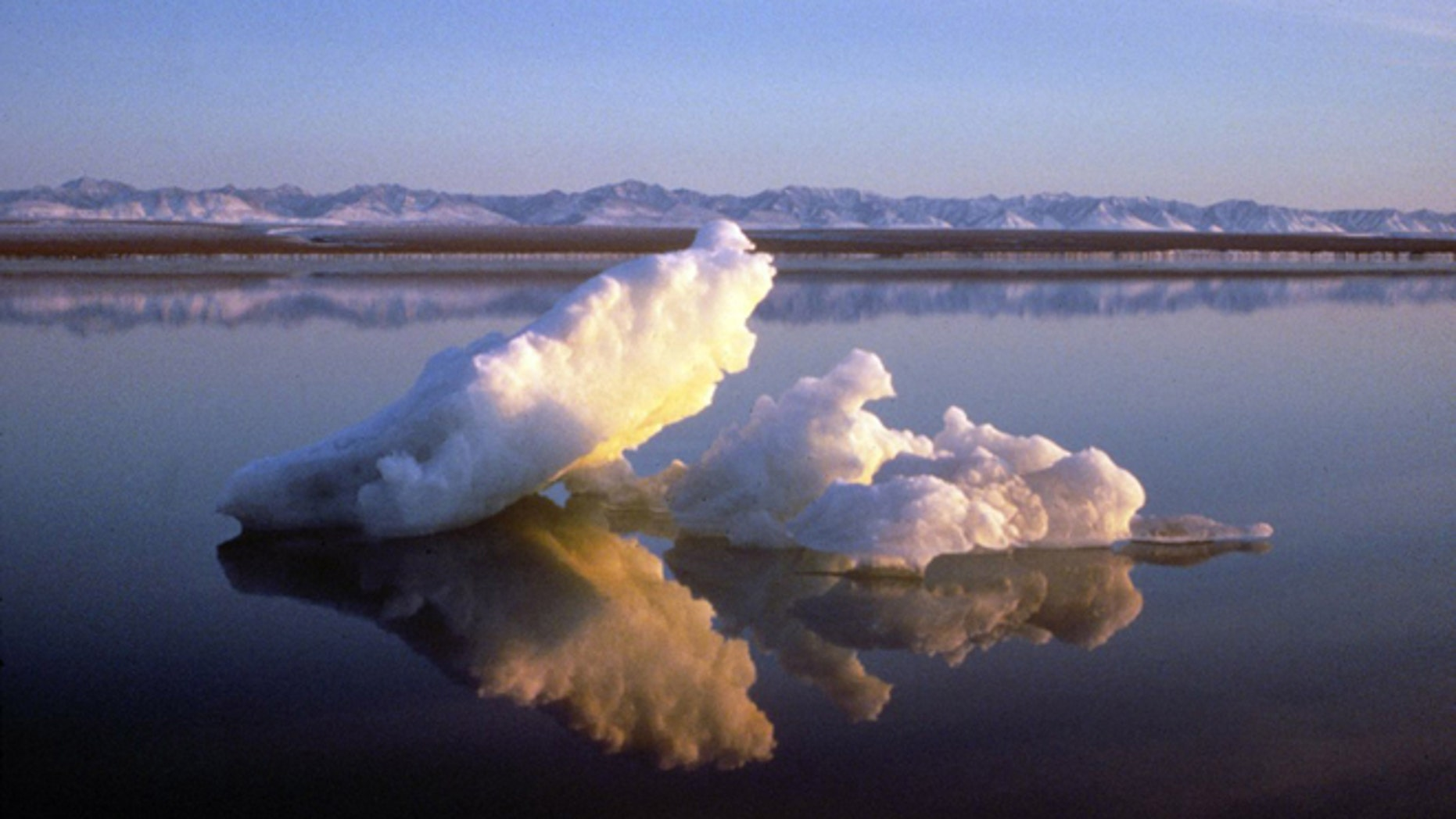 Sea ice floats within the 1002 Area of the Arctic National Wildlife Refuge in this undated handout photo provided by the U.S. Fish and Wildlife Service Alaska Image Library.