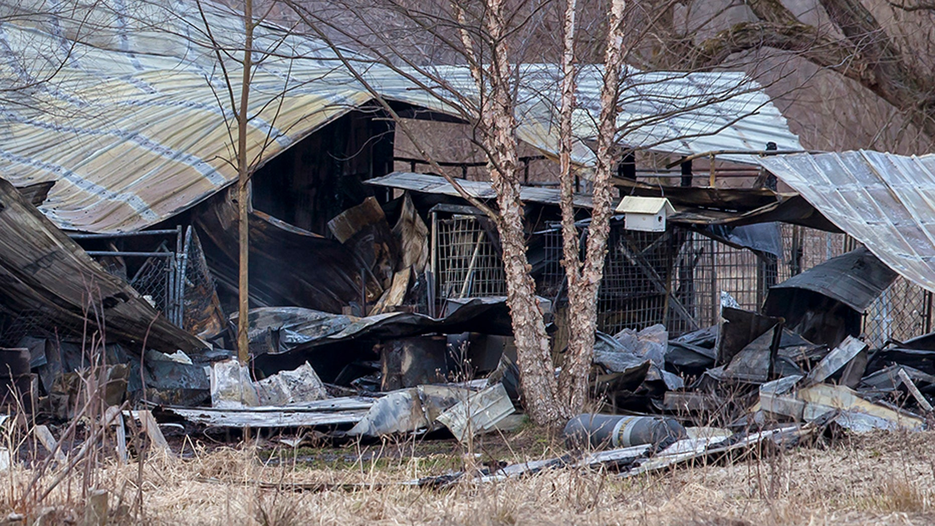 Authorities say over two dozen dogs are believed to have died in the early morning fire.