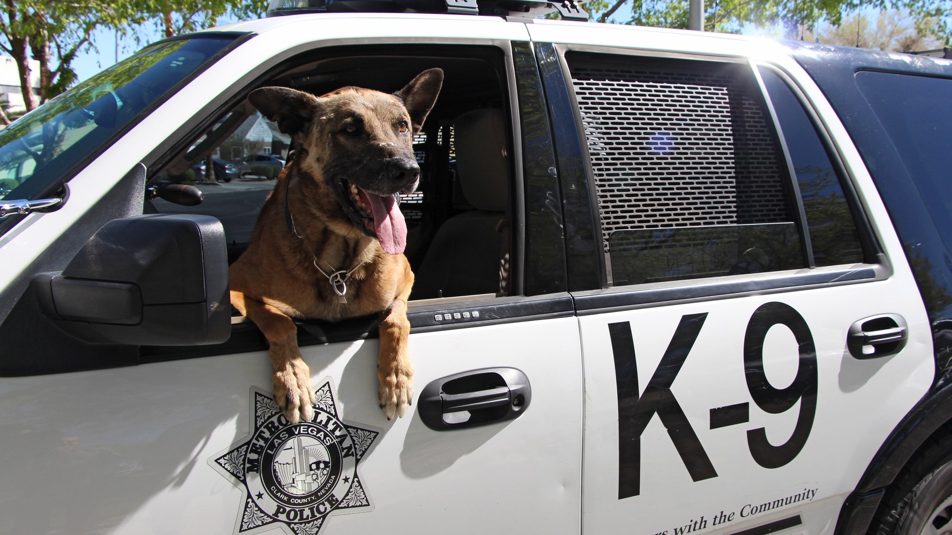 Nicky, the police K-9, in an undated photo.