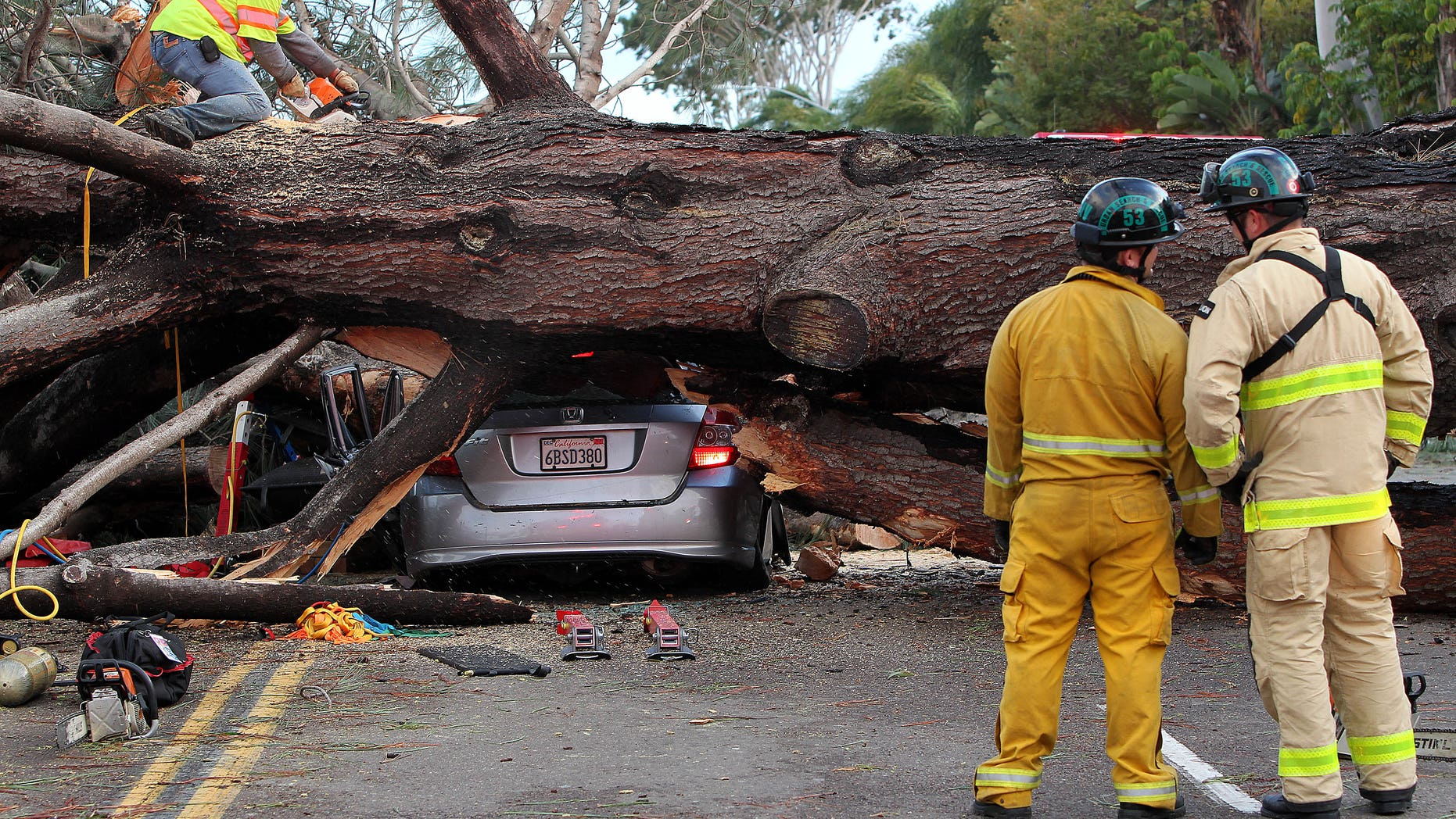 Firefighters work to remove a large tree that fell across multiple lanes of traffic, killing a driver in Pacific Beach, Calif., Sunday.