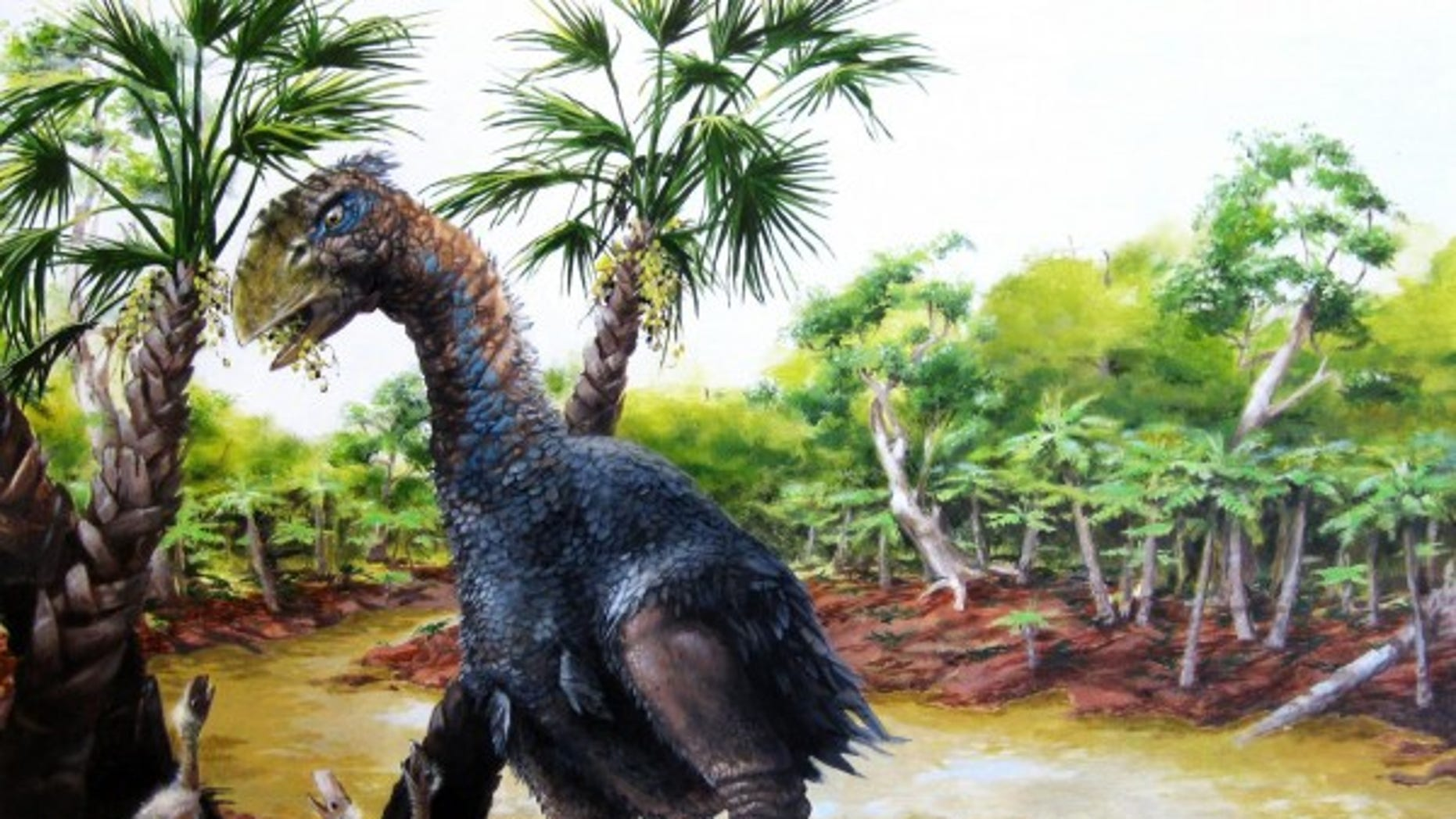 A new study involving CU-Boulder and the Chinese Academy of Sciences has confirmed that a flightless bird weighing several hundred pounds roamed Ellesmere Island in the high Arctic about 50 million years ago. (Illustration by Marlin Peterson)
