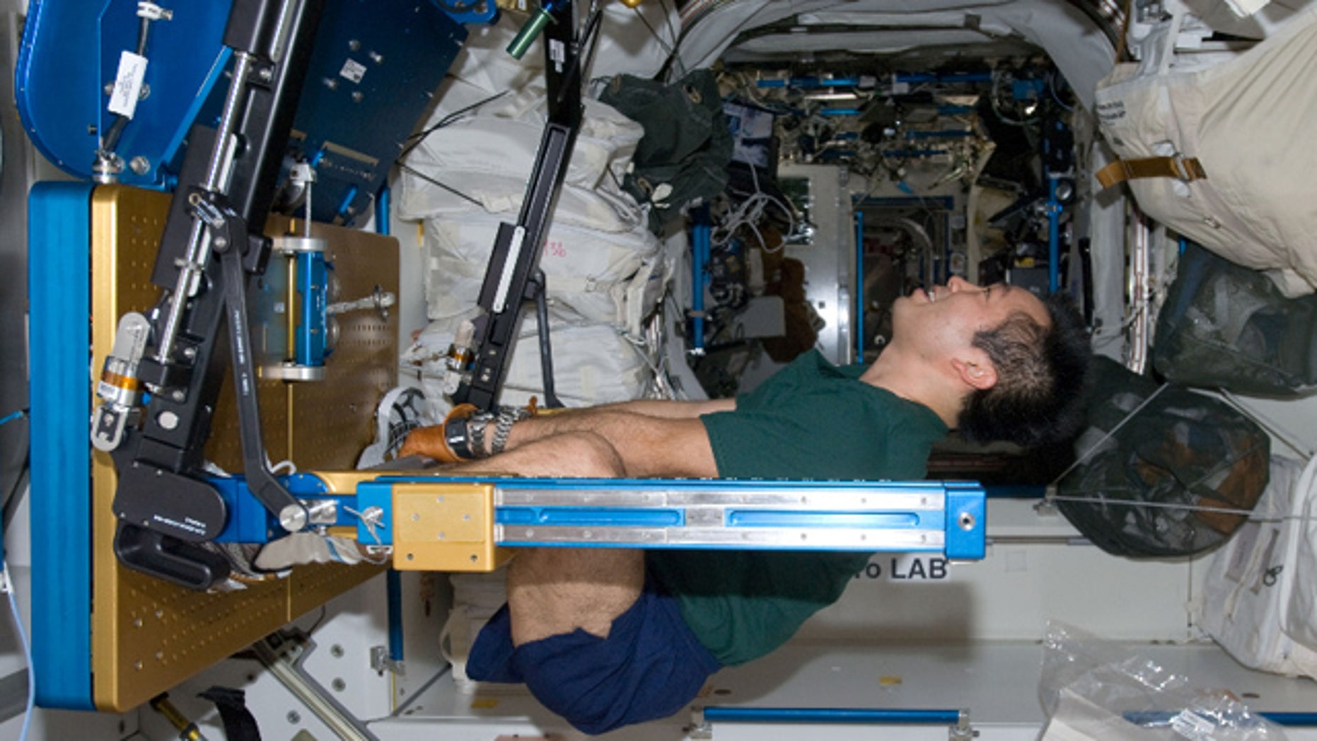 Japan Aerospace Exploration Agency astronaut Koichi Wakata exercises using the Advanced Resistive Exercise Device (ARED) in the International Space Station.
