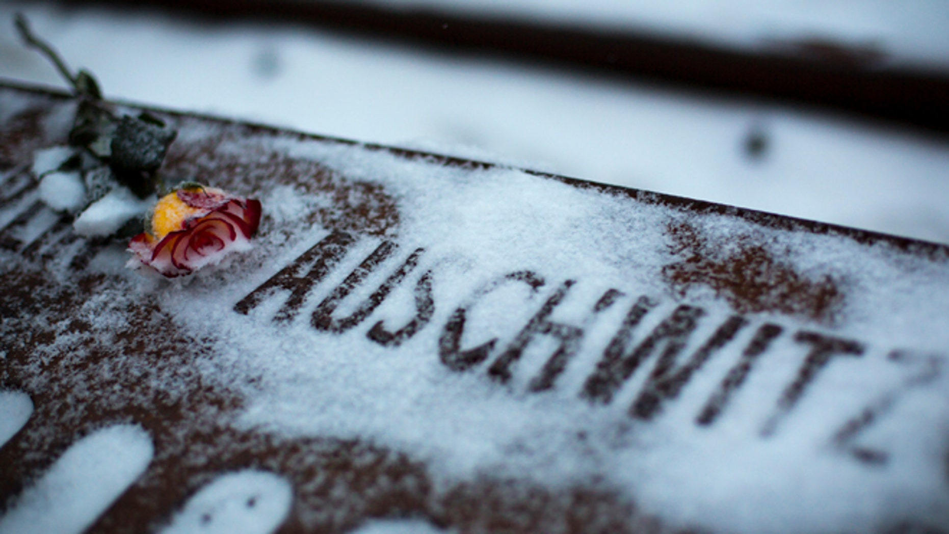 Jan. 25, 2014: A flower lies next to the word Auschwitz, denoting the name of the Nazi concentration camp, at the Gleis 17 (platform 17) memorial commemorating Jews who were deported from Grunewald train station during World War II in Berlin.