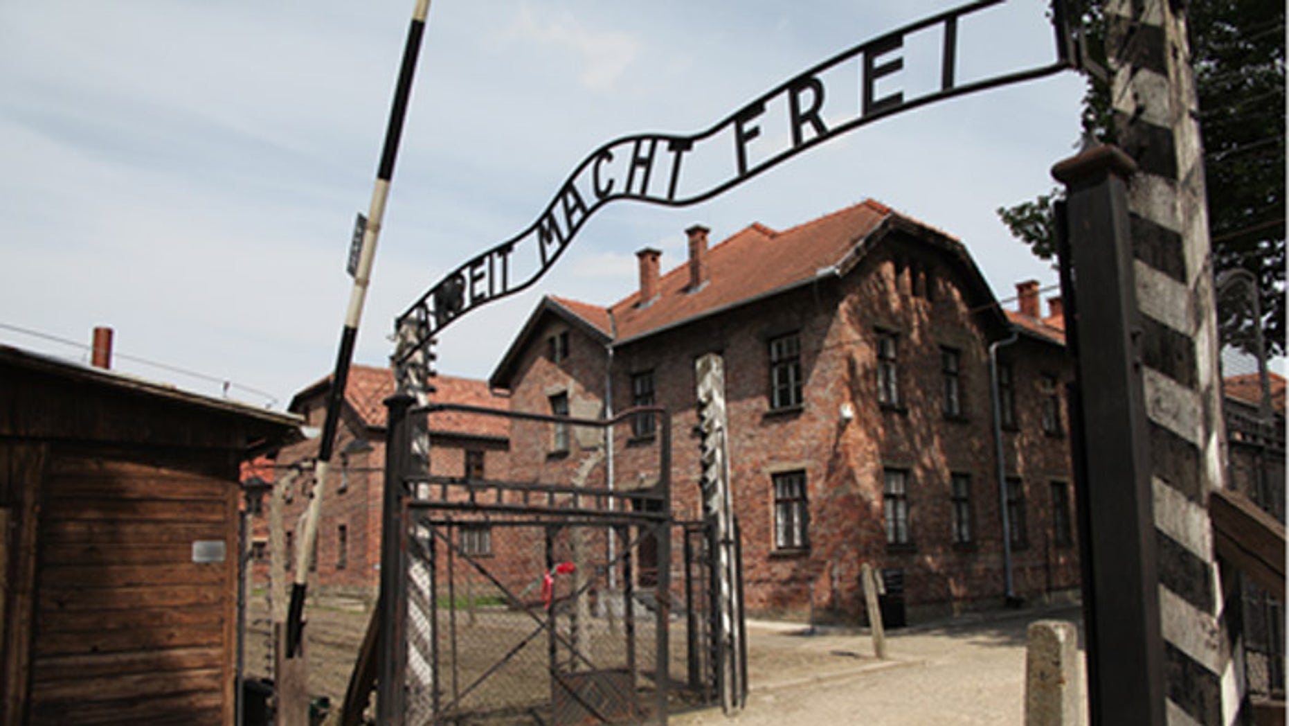 International Holocaust Remembrance Day marks the liberation of the infamous Auschwitz death camp 71 years ago.
